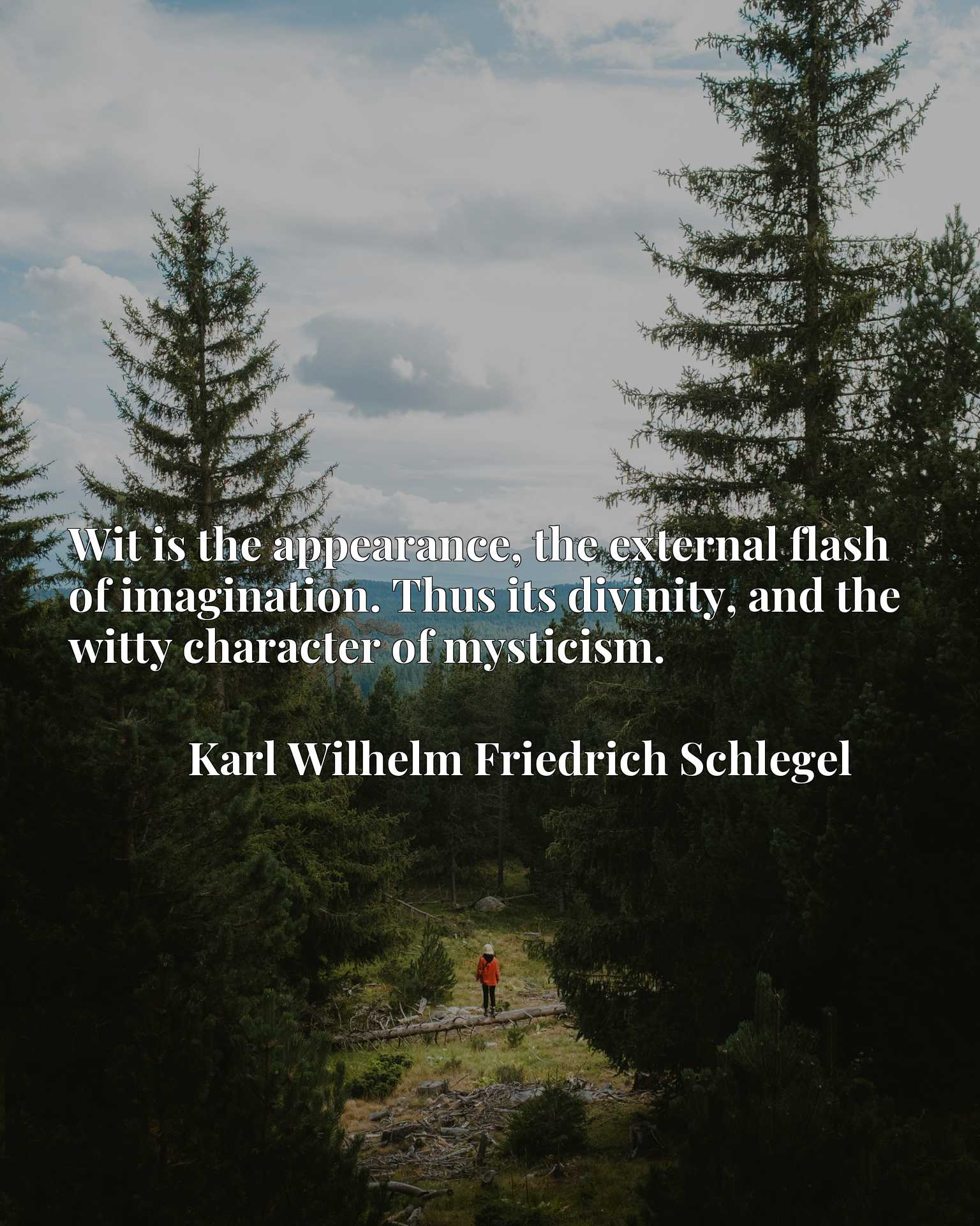 Quote Picture :Wit is the appearance, the external flash of imagination. Thus its divinity, and the witty character of mysticism.