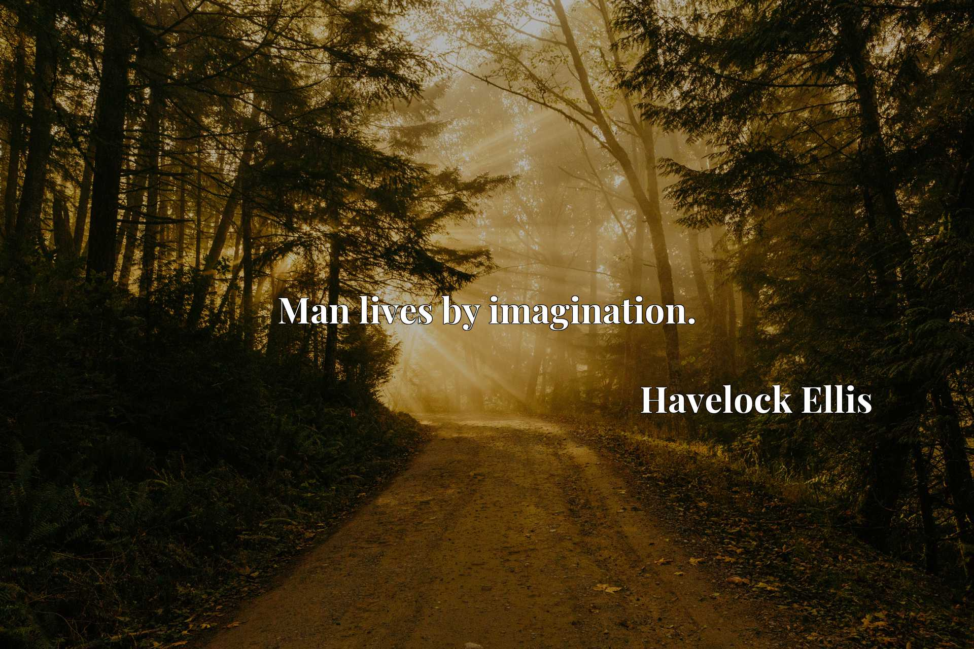 Quote Picture :Man lives by imagination.