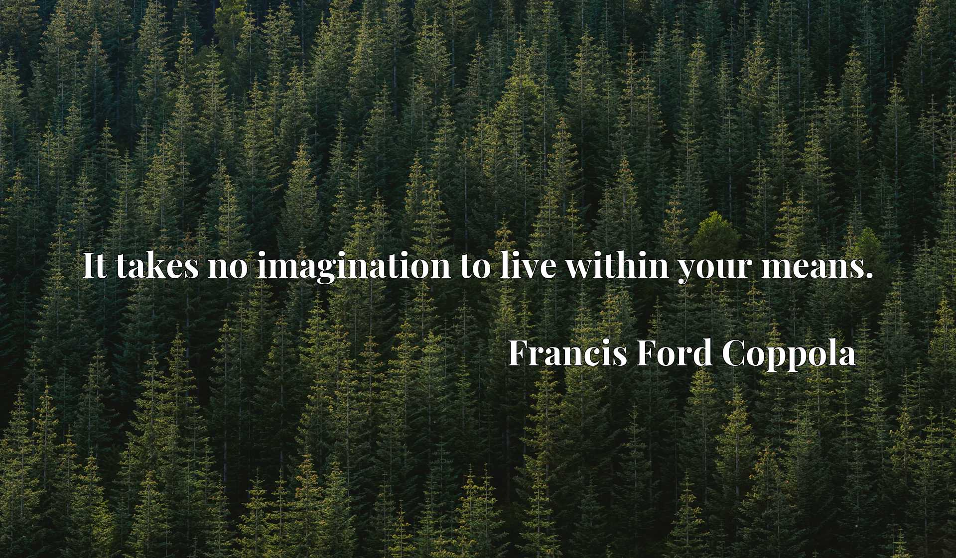 Quote Picture :It takes no imagination to live within your means.