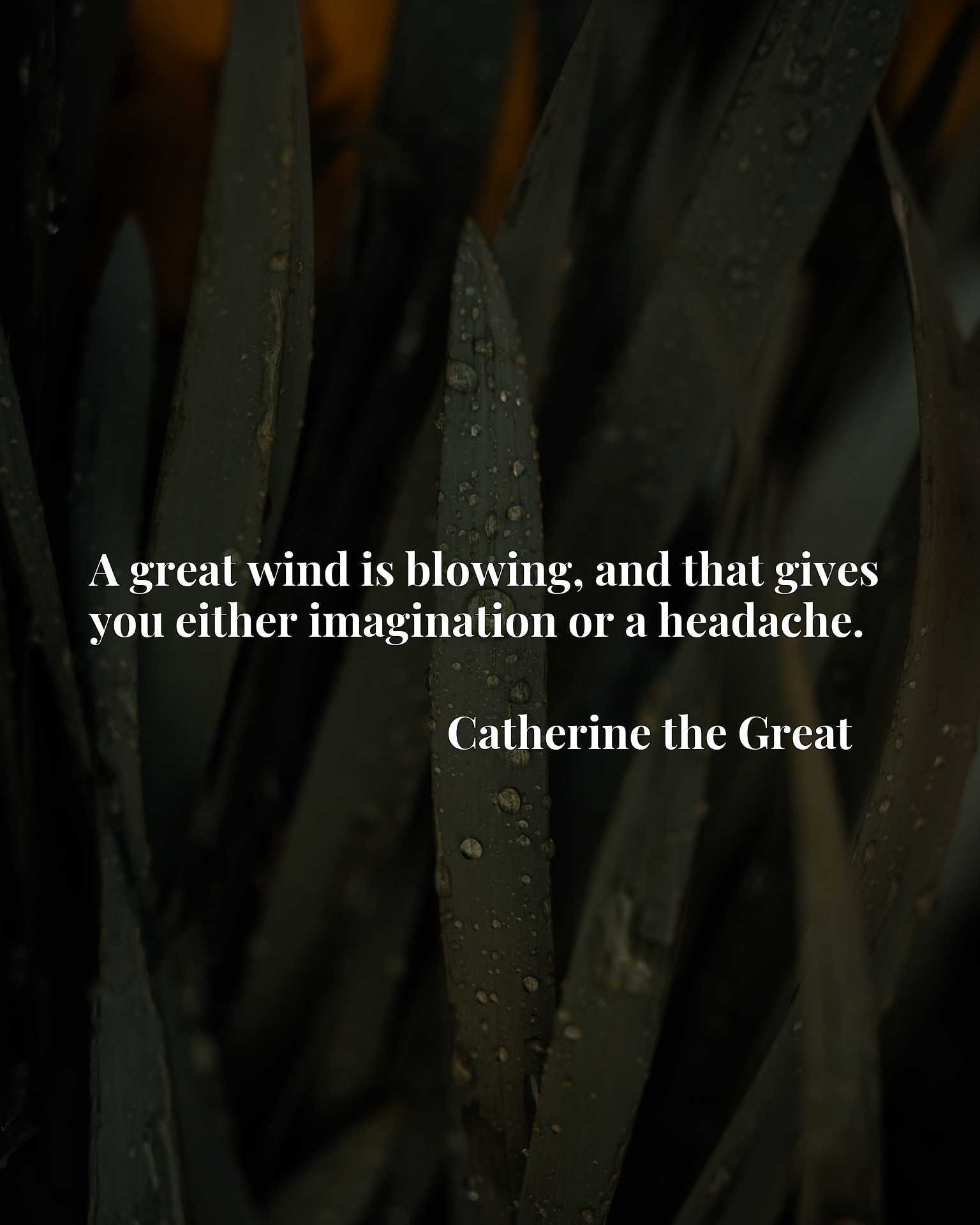 Quote Picture :A great wind is blowing, and that gives you either imagination or a headache.