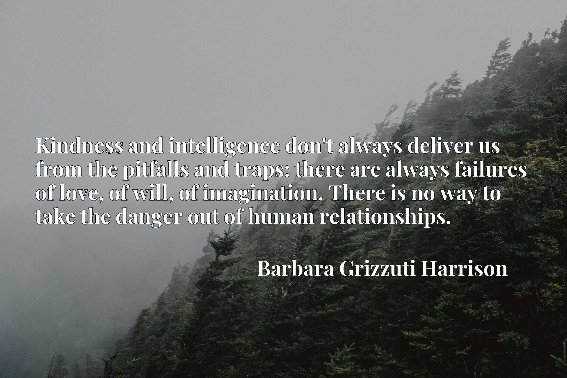 Quote Picture :Kindness and intelligence don't always deliver us from the pitfalls and traps: there are always failures of love, of will, of imagination. There is no way to take the danger out of human relationships.