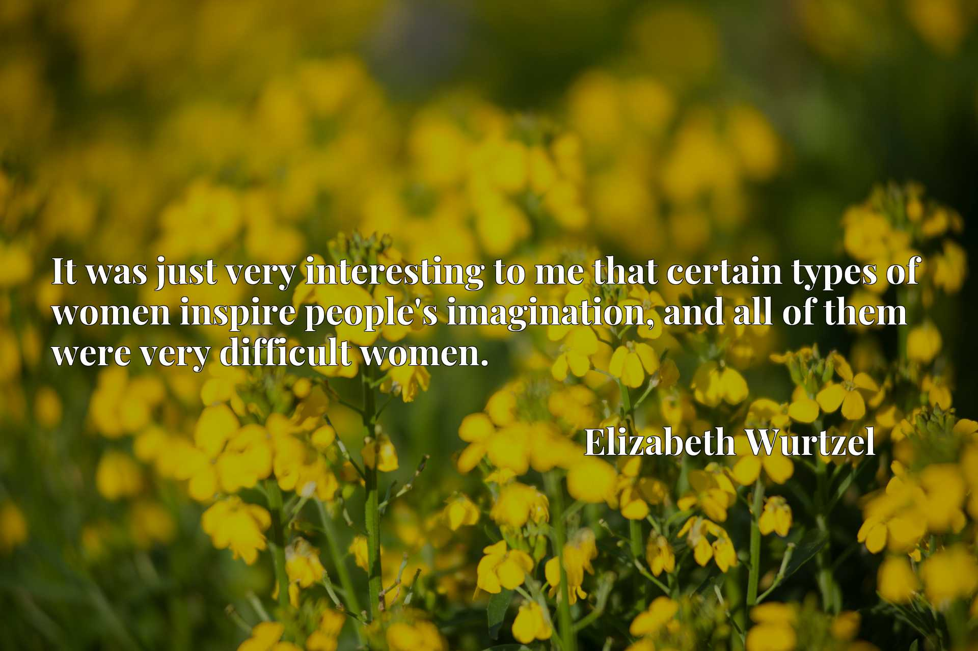 Quote Picture :It was just very interesting to me that certain types of women inspire people's imagination, and all of them were very difficult women.