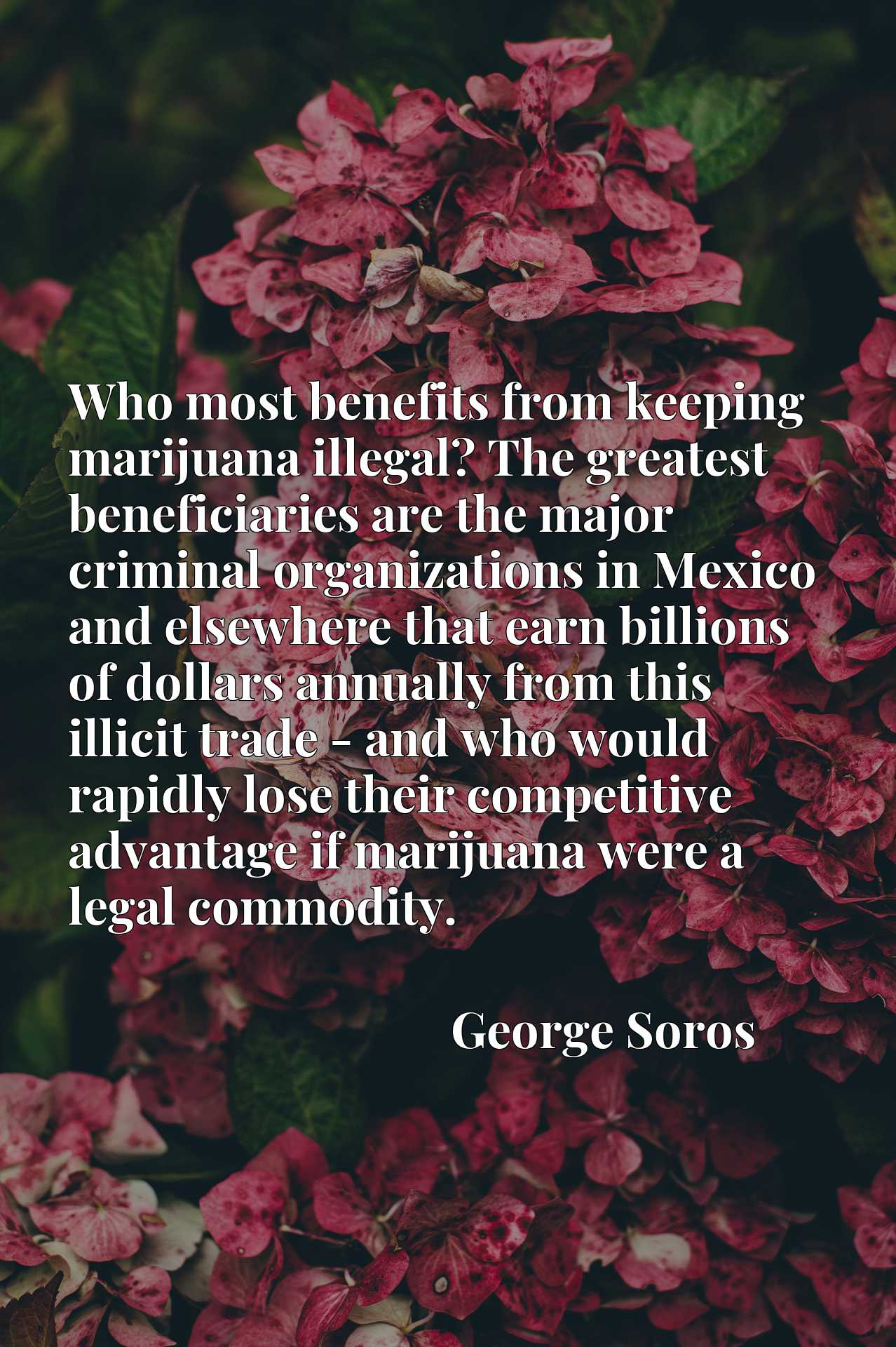 Who most benefits from keeping marijuana illegal? The greatest beneficiaries are the major criminal organizations in Mexico and elsewhere that earn billions of dollars annually from this illicit trade - and who would rapidly lose their competitive advantage if marijuana were a legal commodity.