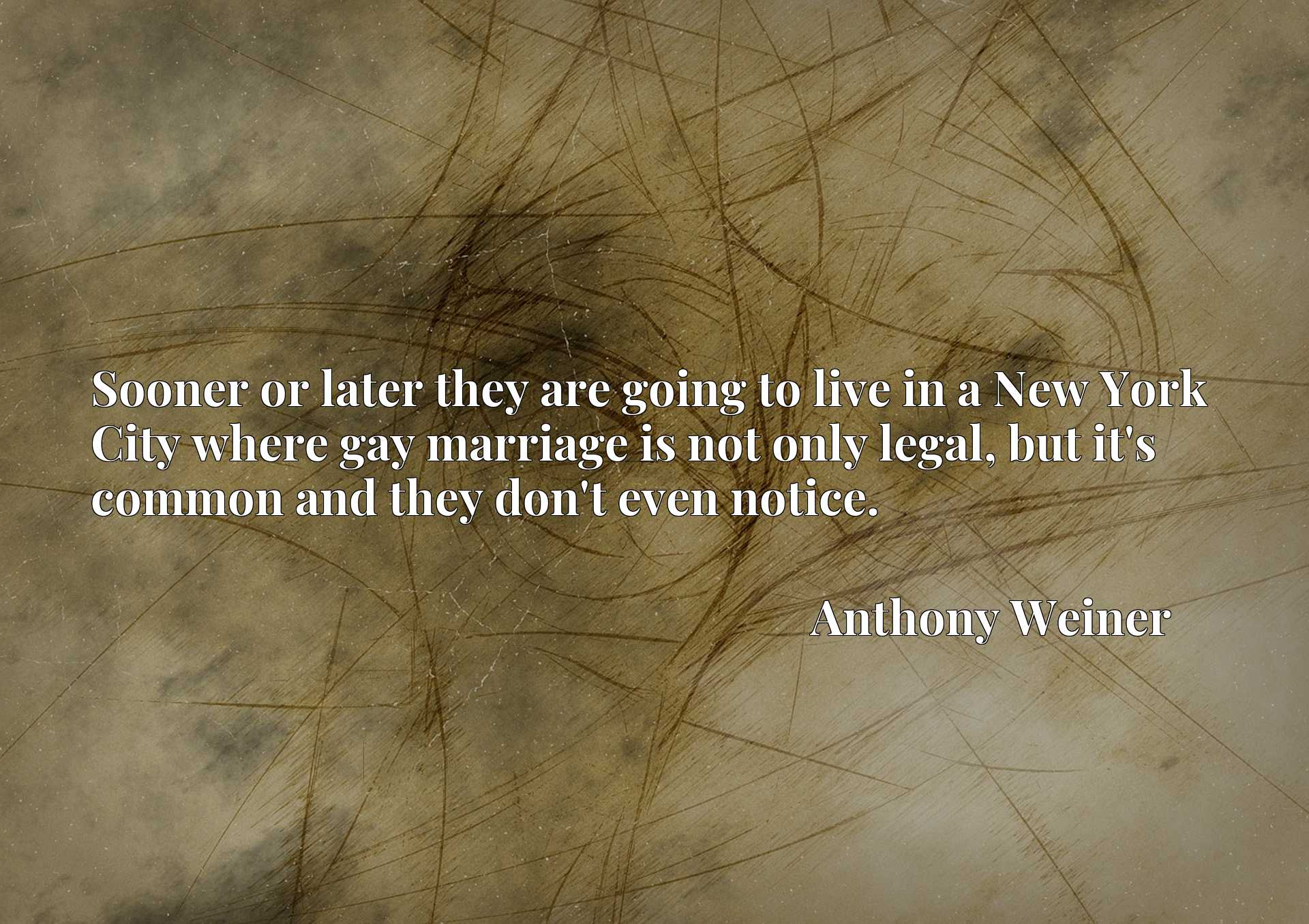Quote Picture :Sooner or later they are going to live in a New York City where gay marriage is not only legal, but it's common and they don't even notice.