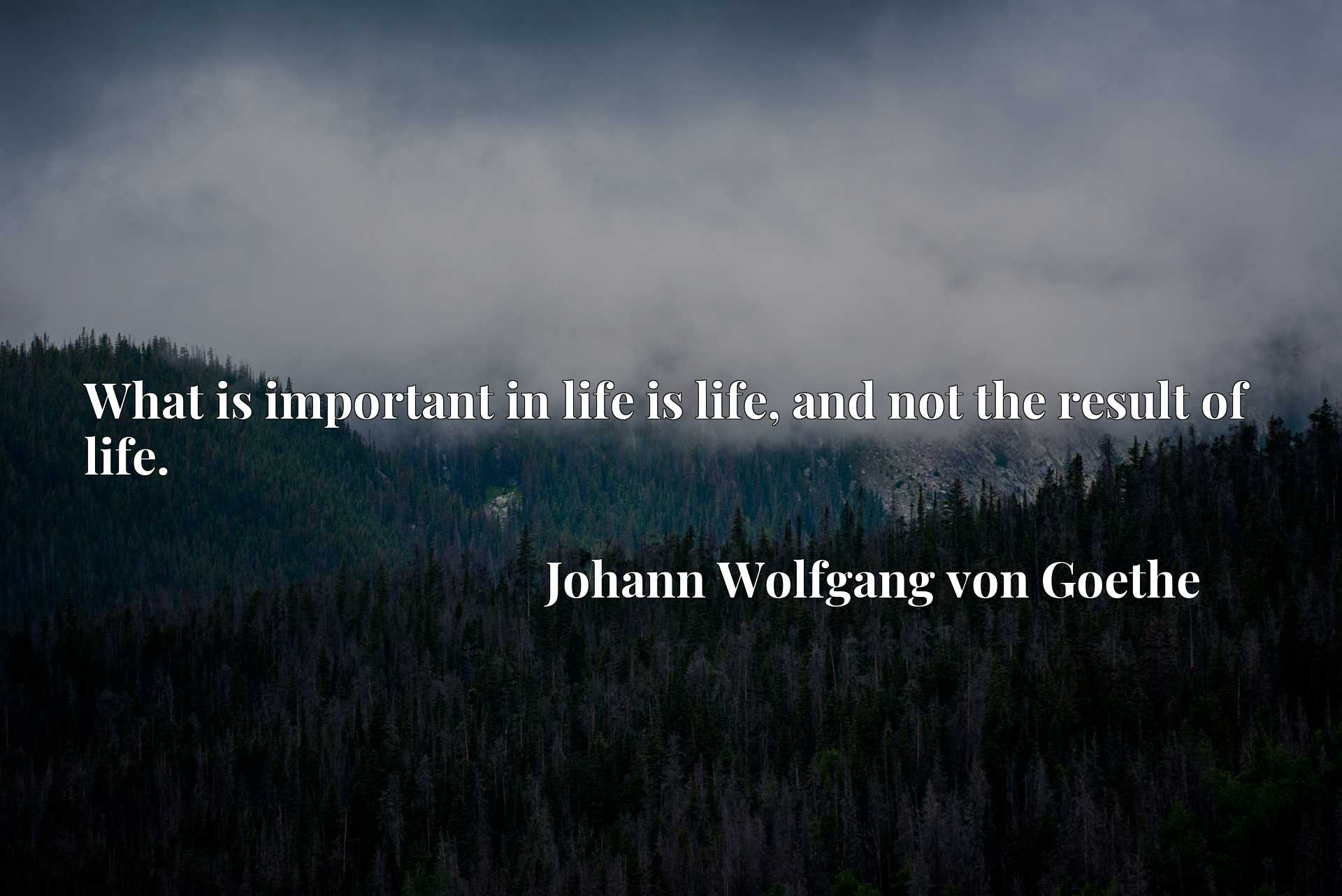 Quote Picture :What is important in life is life, and not the result of life.