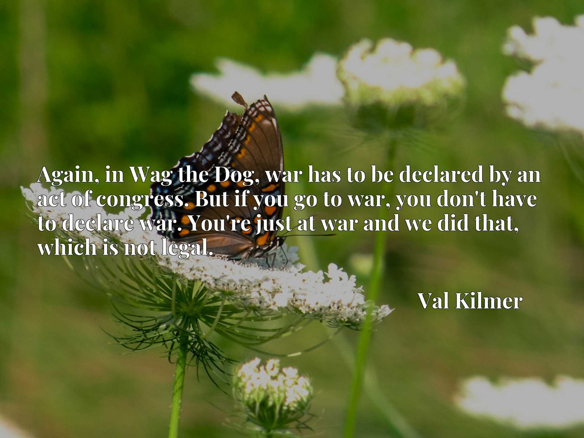 Quote Picture :Again, in Wag the Dog, war has to be declared by an act of congress. But if you go to war, you don't have to declare war. You're just at war and we did that, which is not legal.