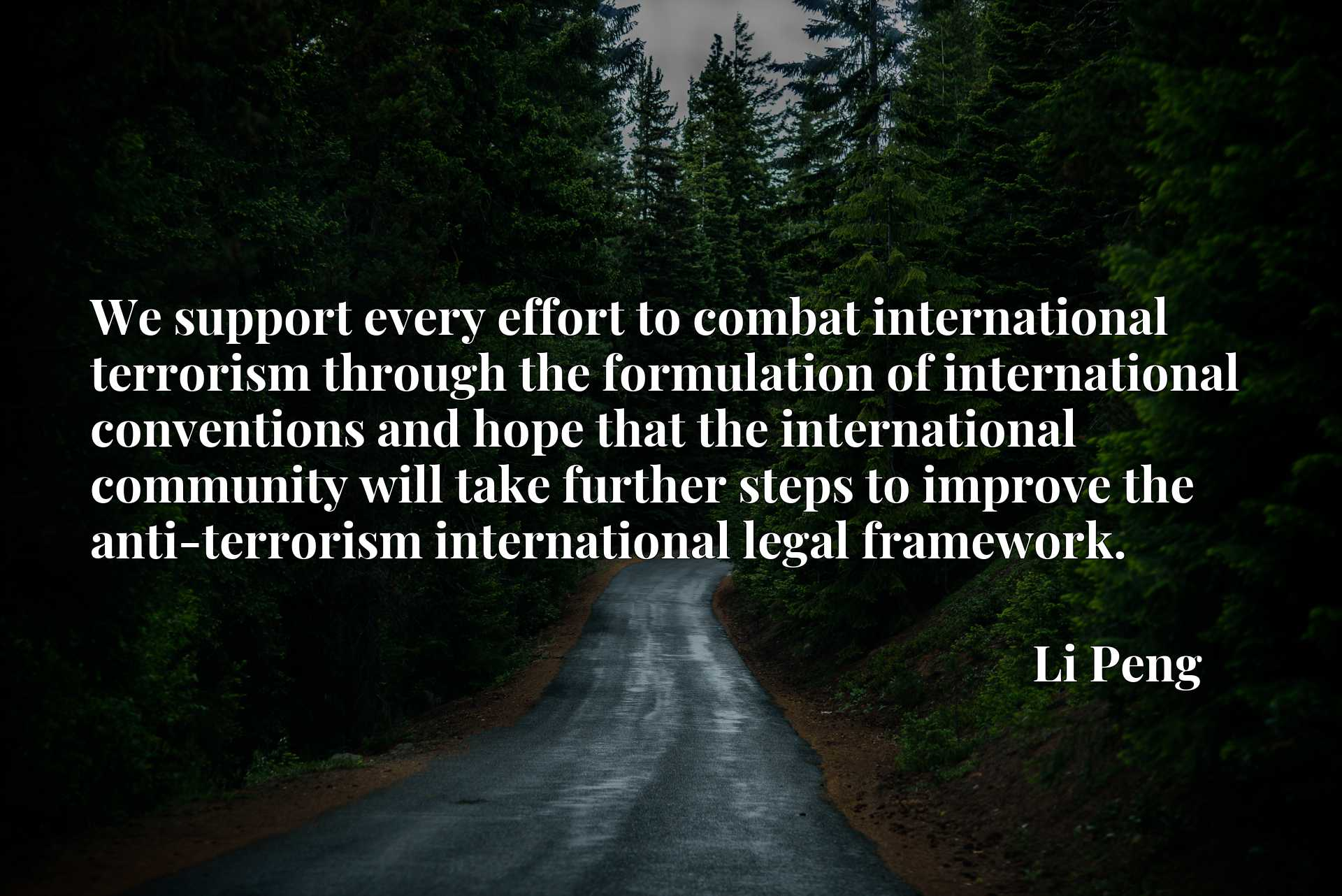 Quote Picture :We support every effort to combat international terrorism through the formulation of international conventions and hope that the international community will take further steps to improve the anti-terrorism international legal framework.