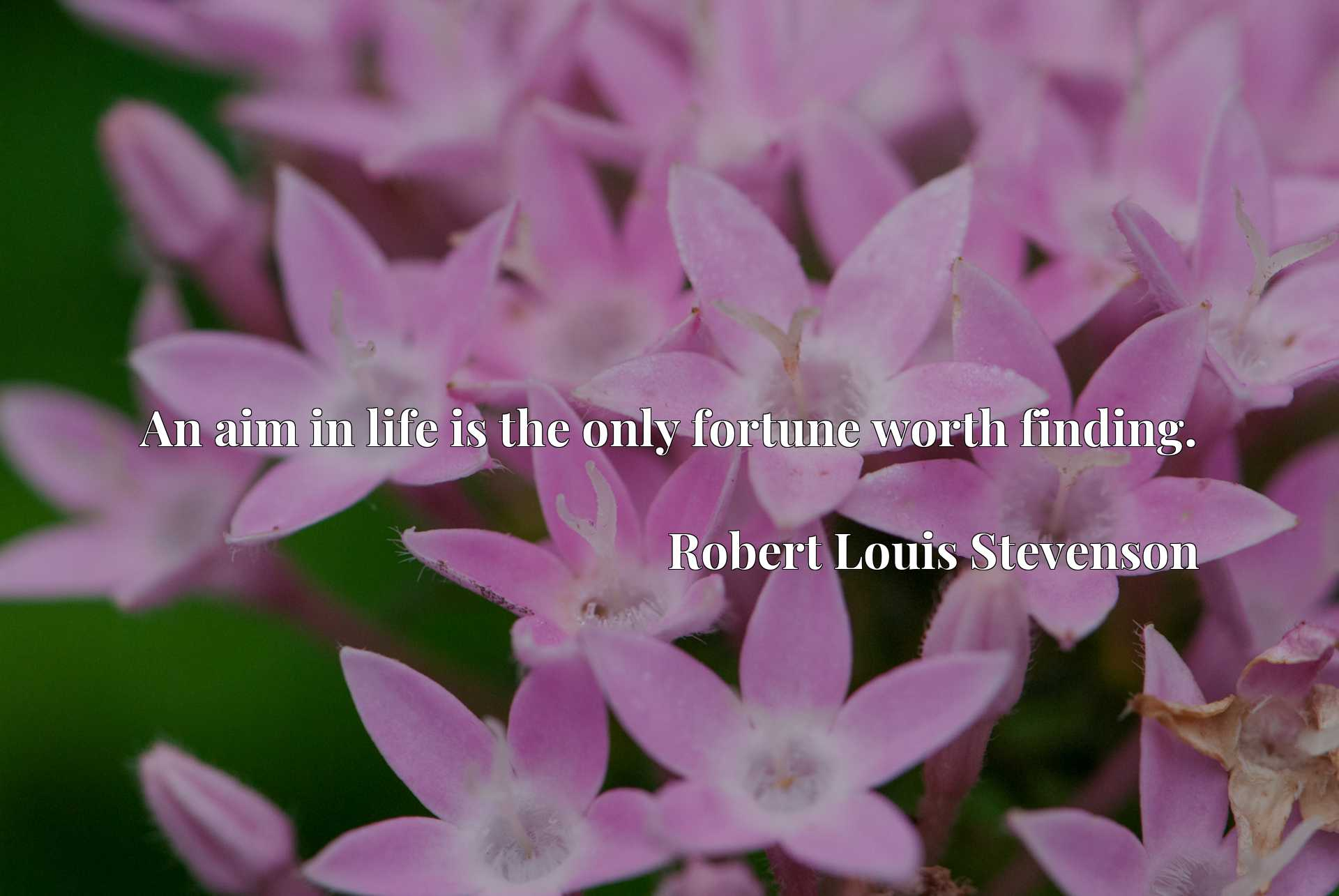 Quote Picture :An aim in life is the only fortune worth finding.