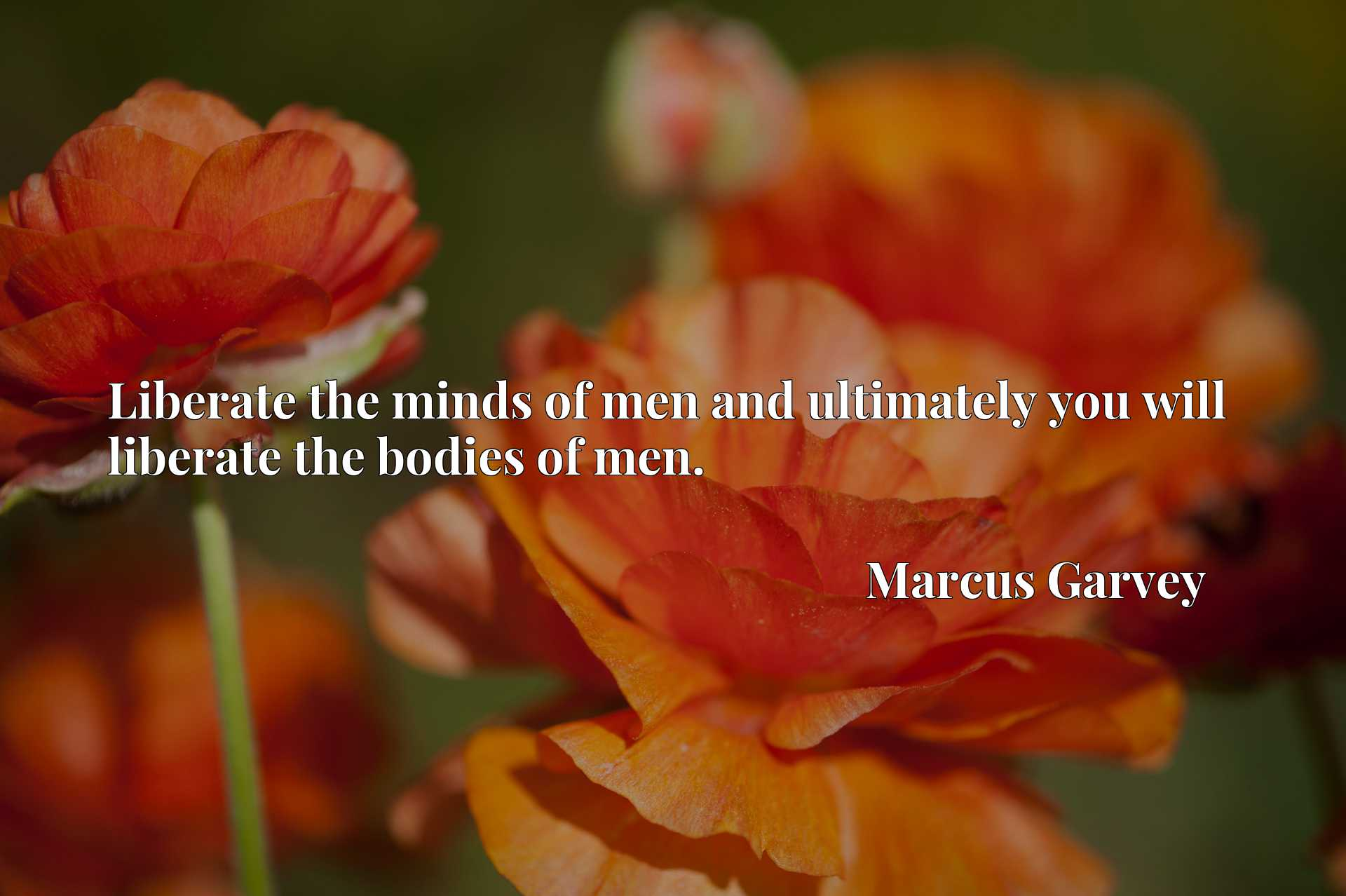 Quote Picture :Liberate the minds of men and ultimately you will liberate the bodies of men.