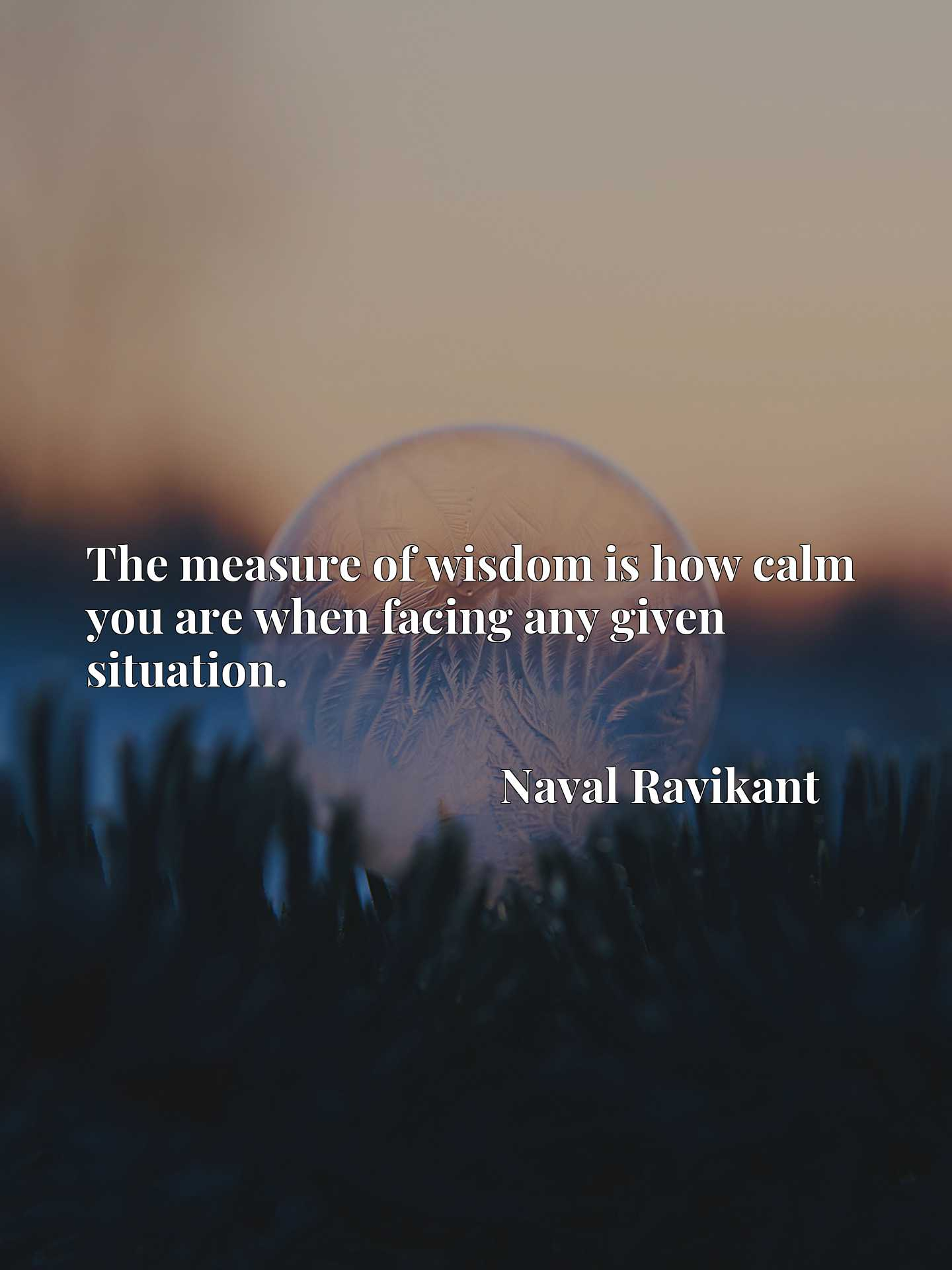 Quote Picture :The measure of wisdom is how calm you are when facing any given situation.