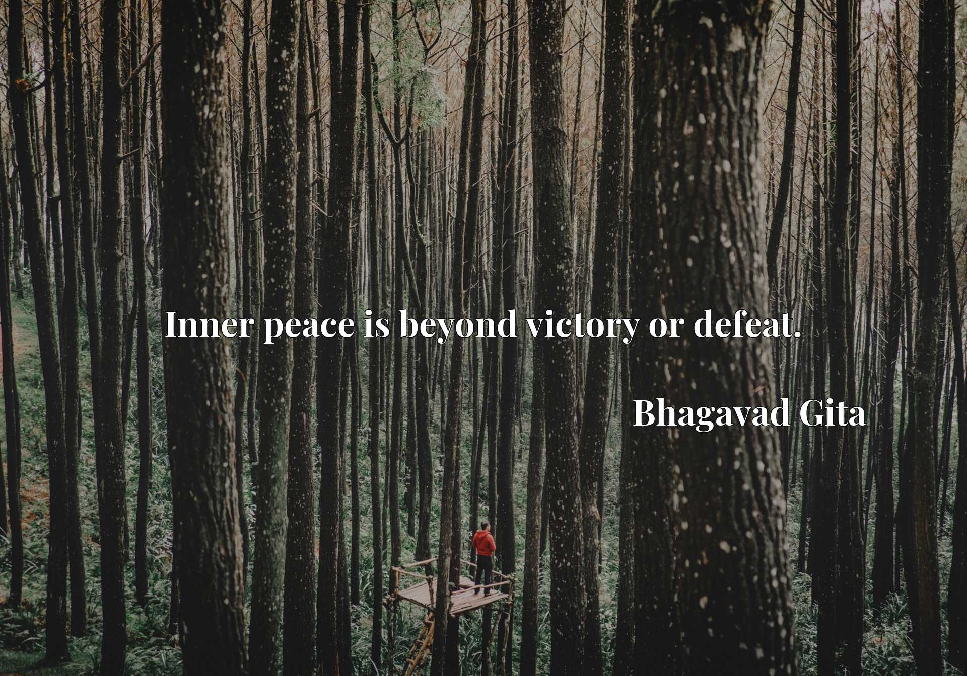 Quote Picture :Inner peace is beyond victory or defeat.