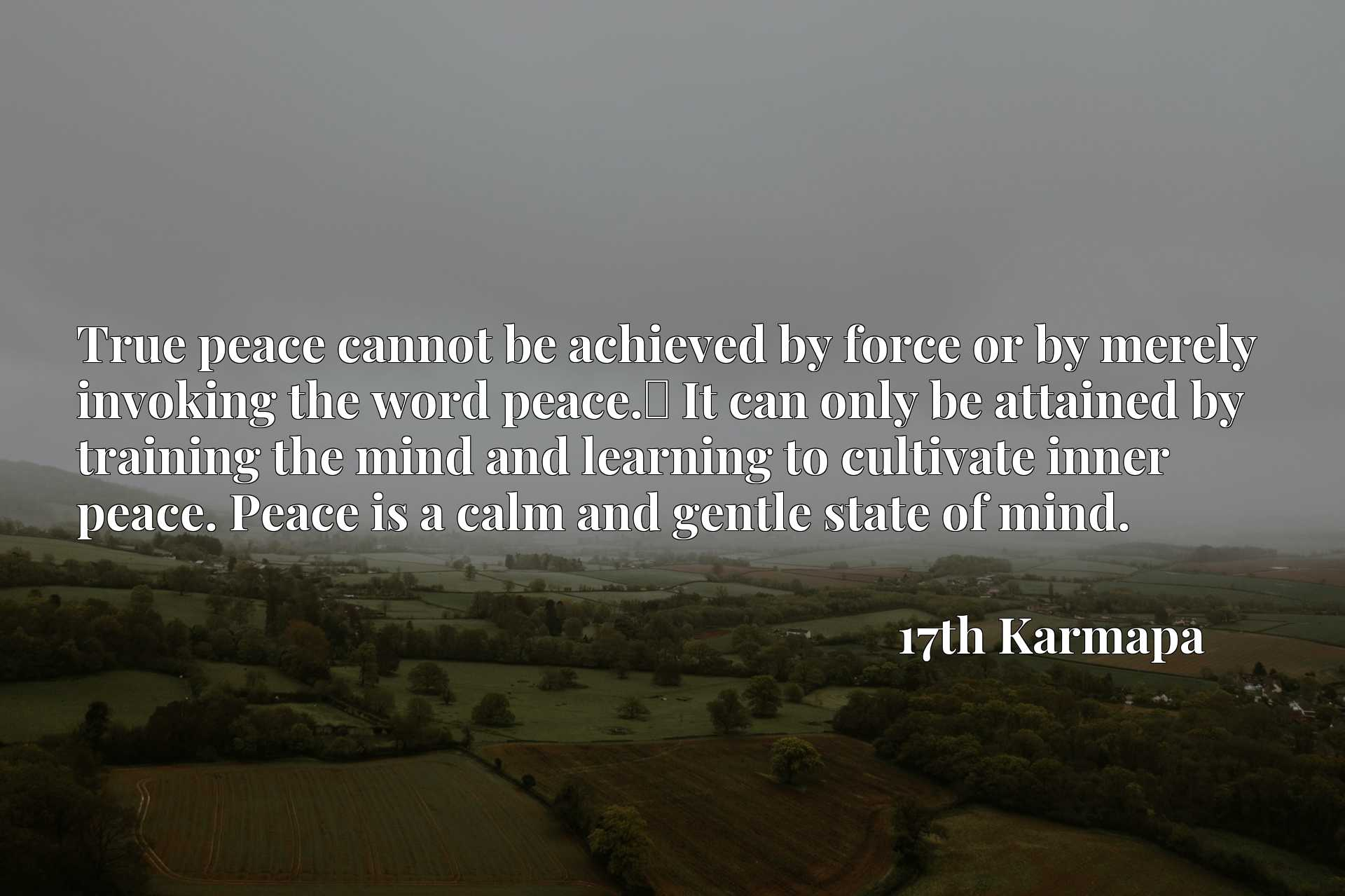 True peace cannot be achieved by force or by merely invoking the word peace.x9d It can only be attained by training the mind and learning to cultivate inner peace. Peace is a calm and gentle state of mind.