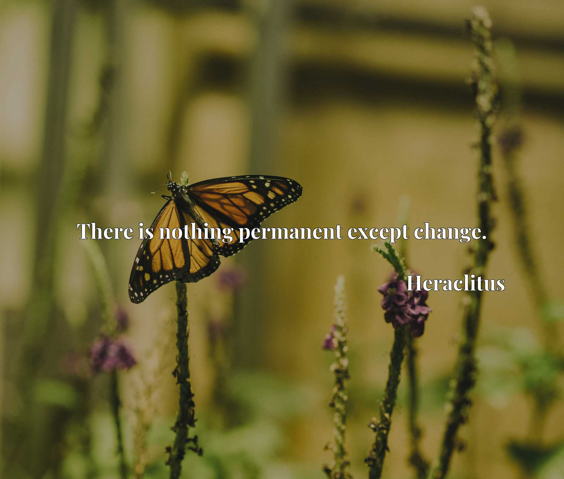 Quote Picture :There is nothing permanent except change.