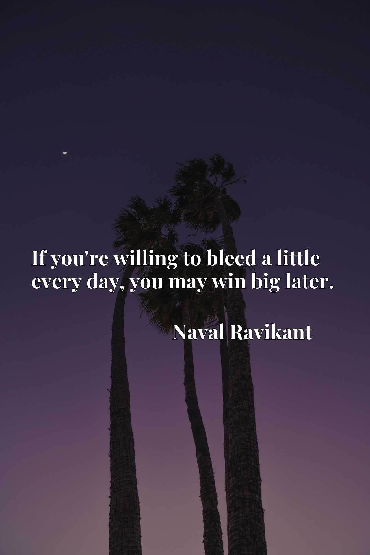 Quote Picture :If you're willing to bleed a little every day, you may win big later.
