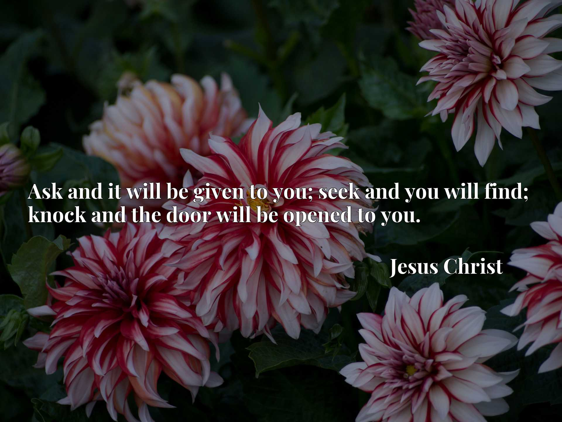 Quote Picture :Ask and it will be given to you; seek and you will find; knock and the door will be opened to you.