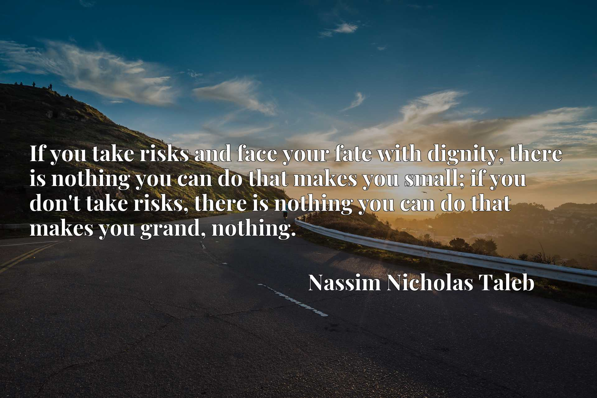 If you take risks and face your fate with dignity, there is nothing you can do that makes you small; if you don't take risks, there is nothing you can do that makes you grand, nothing.