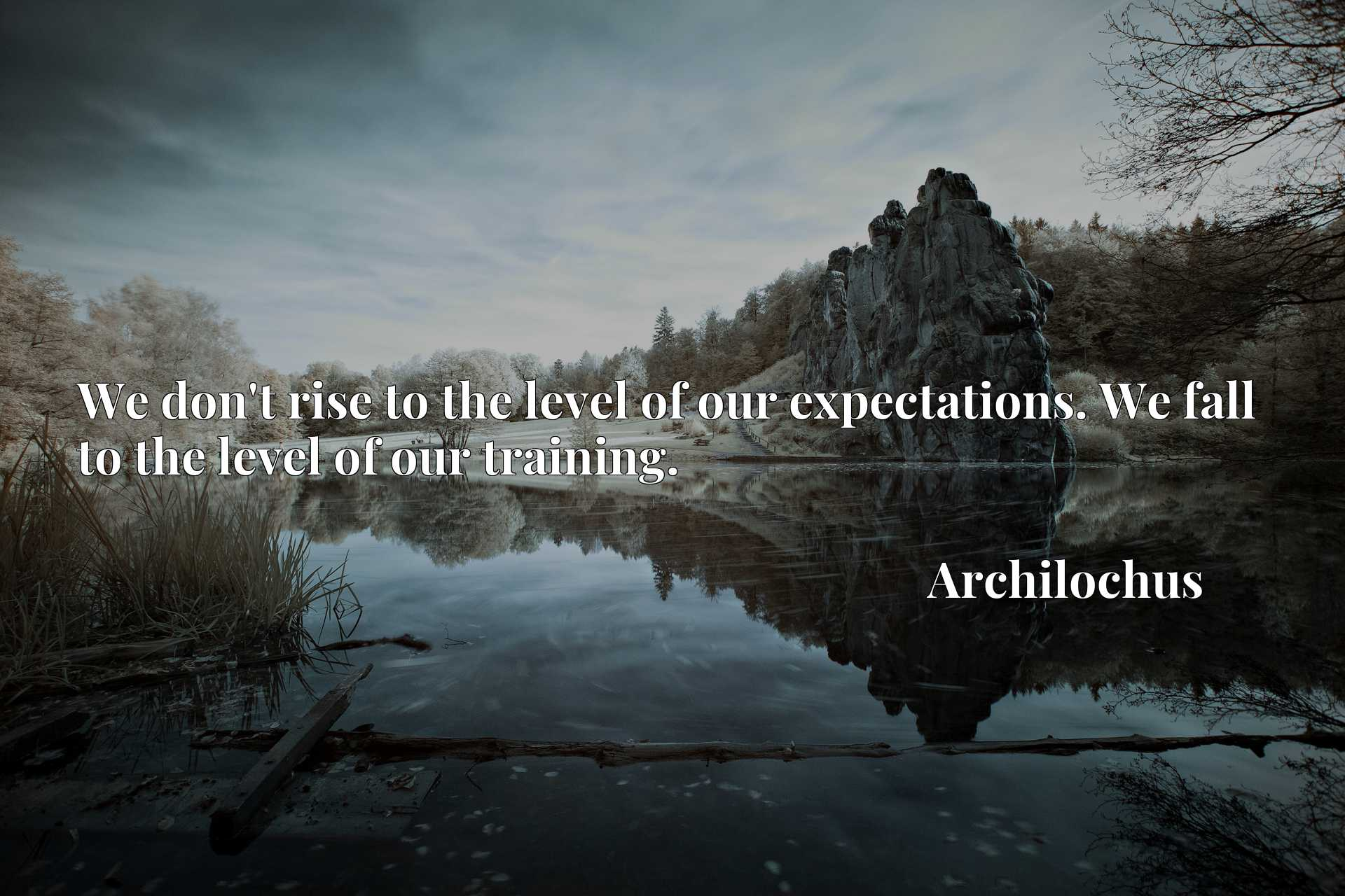 Quote Picture :We don't rise to the level of our expectations. We fall to the level of our training.