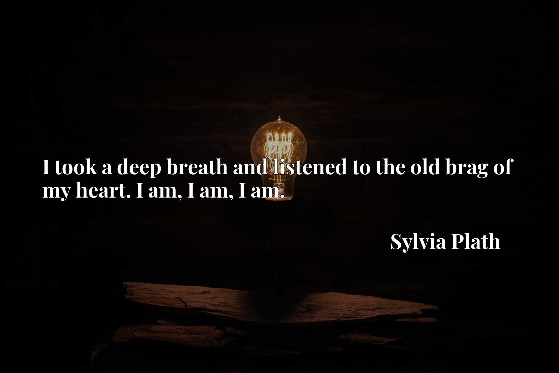 Quote Picture :I took a deep breath and listened to the old brag of my heart. I am, I am, I am.
