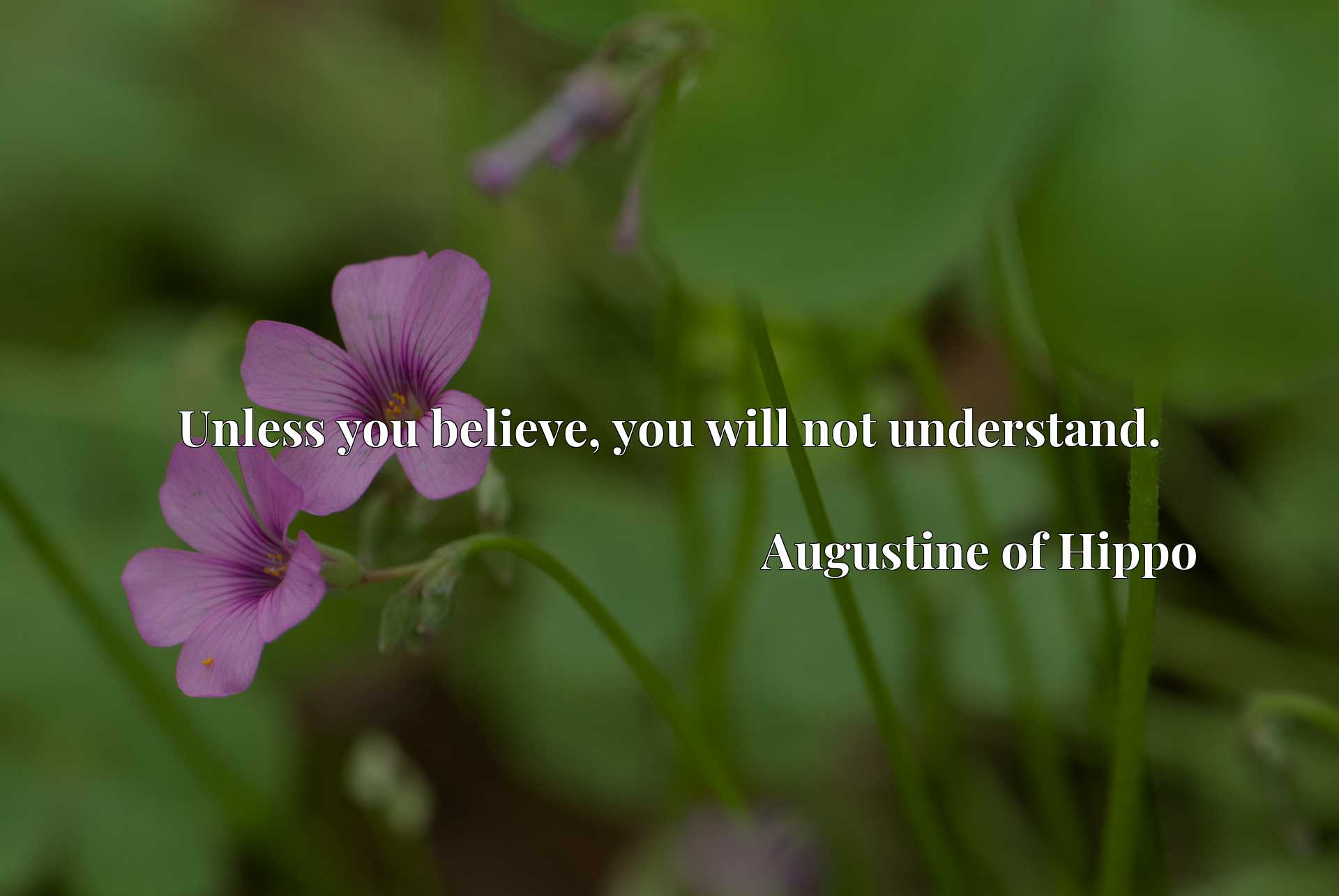 Quote Picture :Unless you believe, you will not understand.