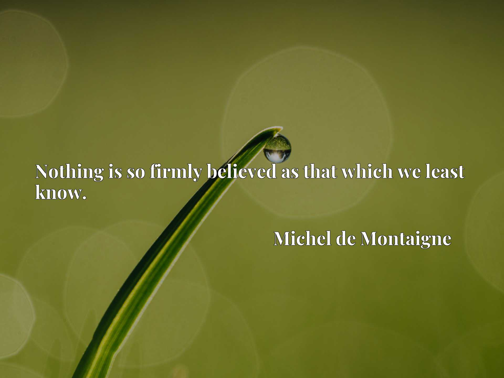 Quote Picture :Nothing is so firmly believed as that which we least know.