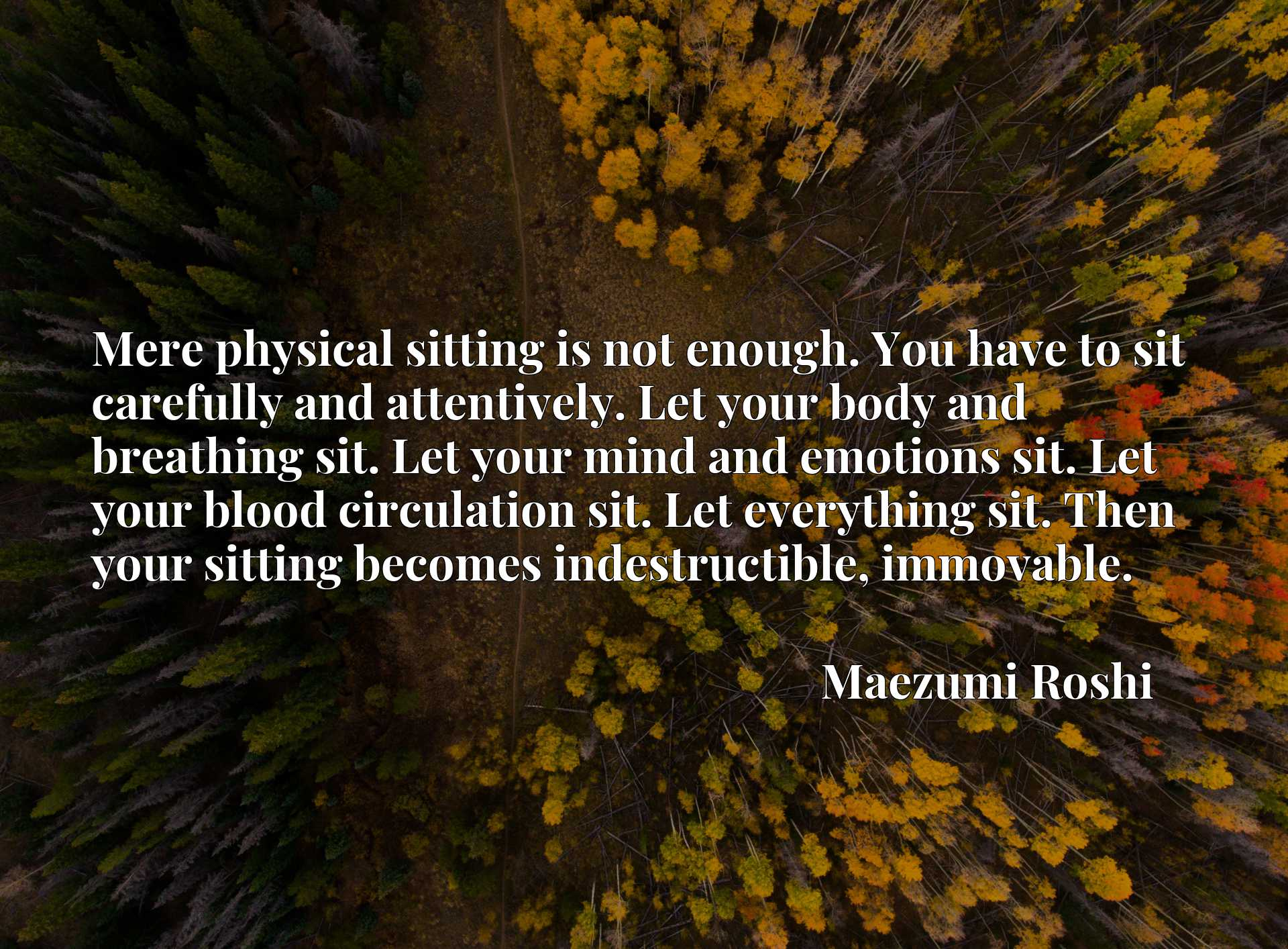 Mere physical sitting is not enough. You have to sit carefully and attentively. Let your body and breathing sit. Let your mind and emotions sit. Let your blood circulation sit. Let everything sit. Then your sitting becomes indestructible, immovable.