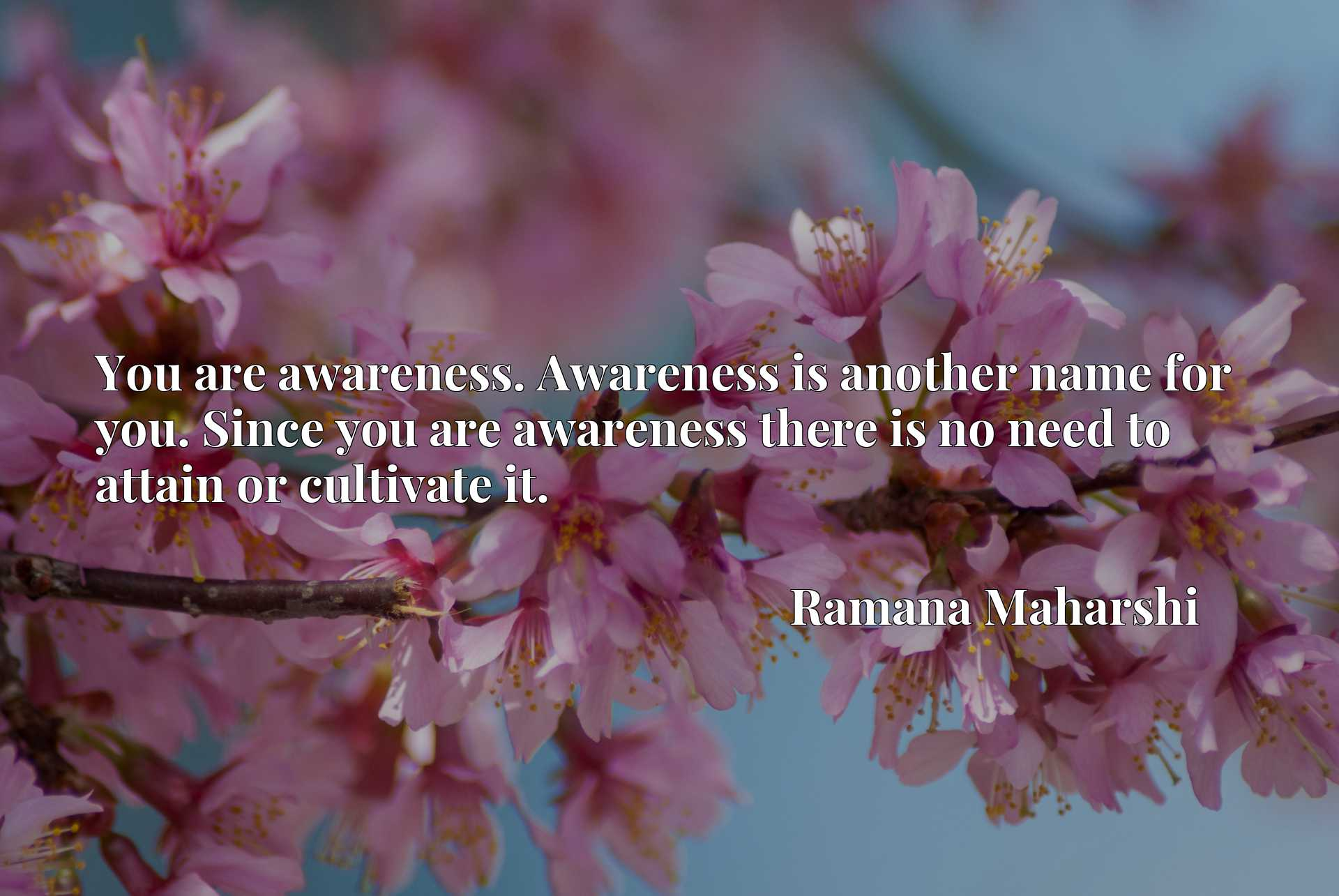 You are awareness. Awareness is another name for you. Since you are awareness there is no need to attain or cultivate it.