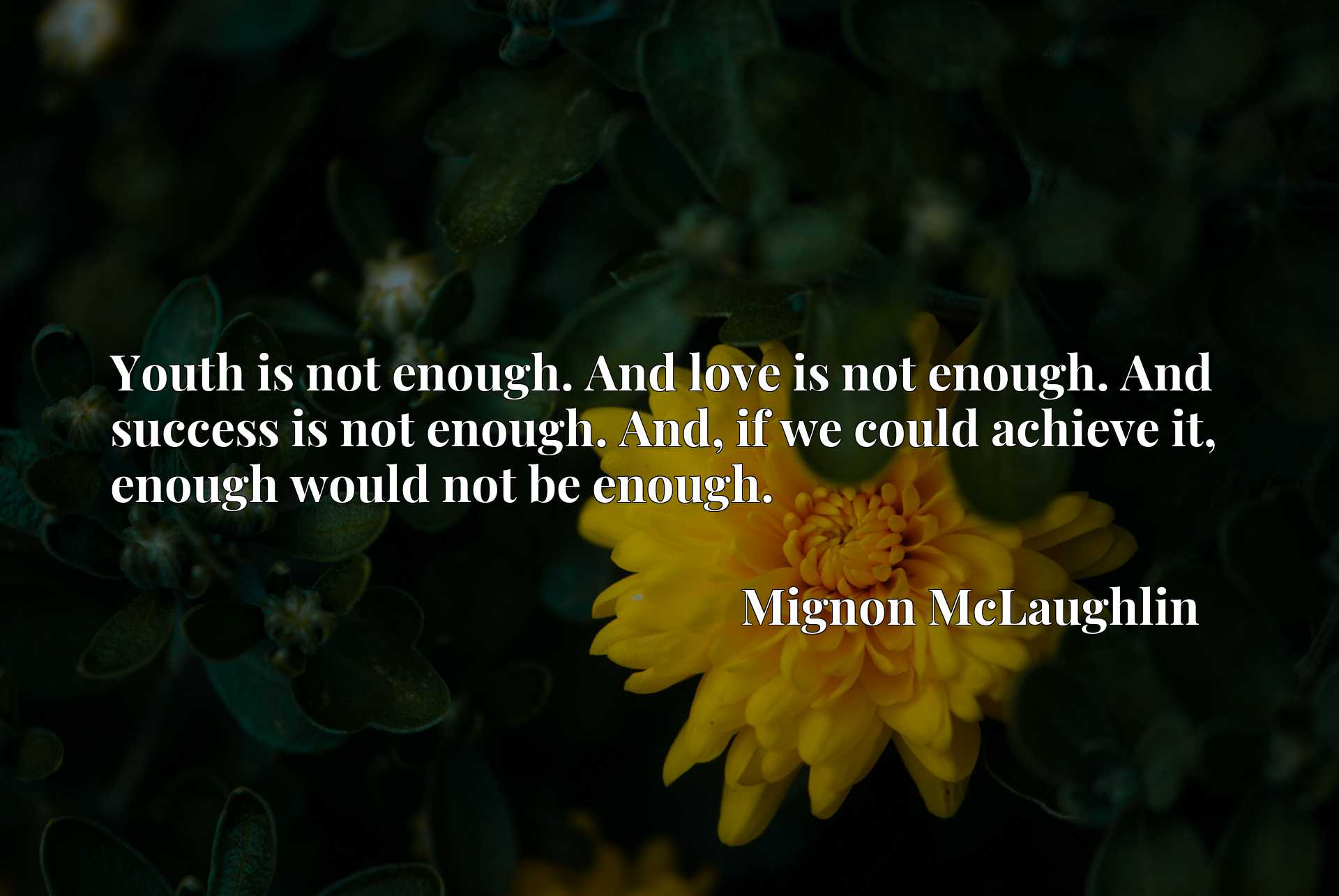 Youth is not enough. And love is not enough. And success is not enough. And, if we could achieve it, enough would not be enough.