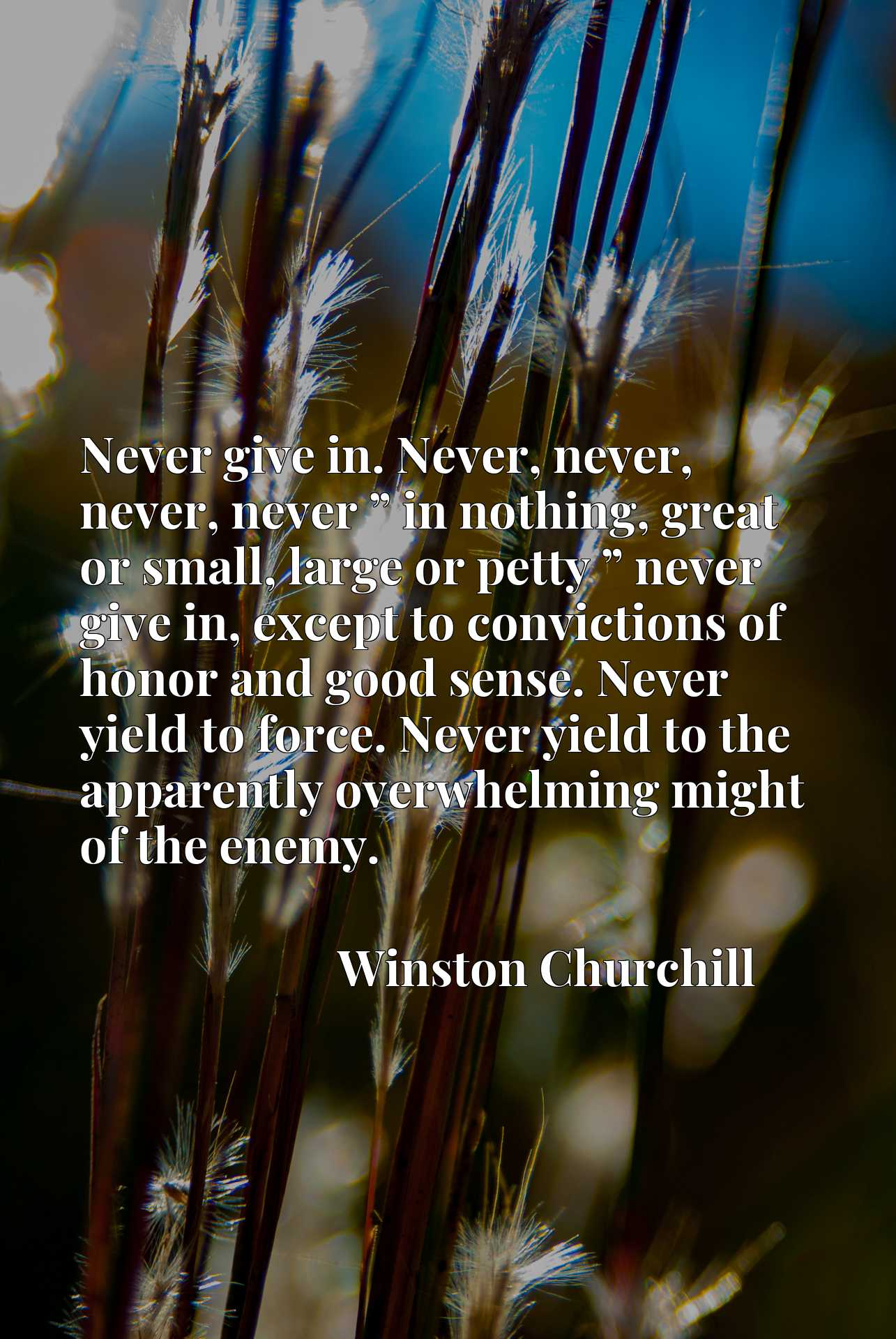 """Never give in. Never, never, never, never """" in nothing, great or small, large or petty """" never give in, except to convictions of honor and good sense. Never yield to force. Never yield to the apparently overwhelming might of the enemy."""