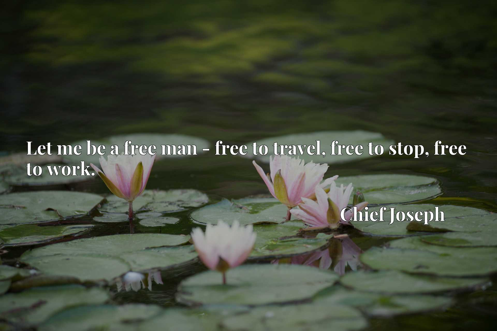 Let me be a free man - free to travel, free to stop, free to work.