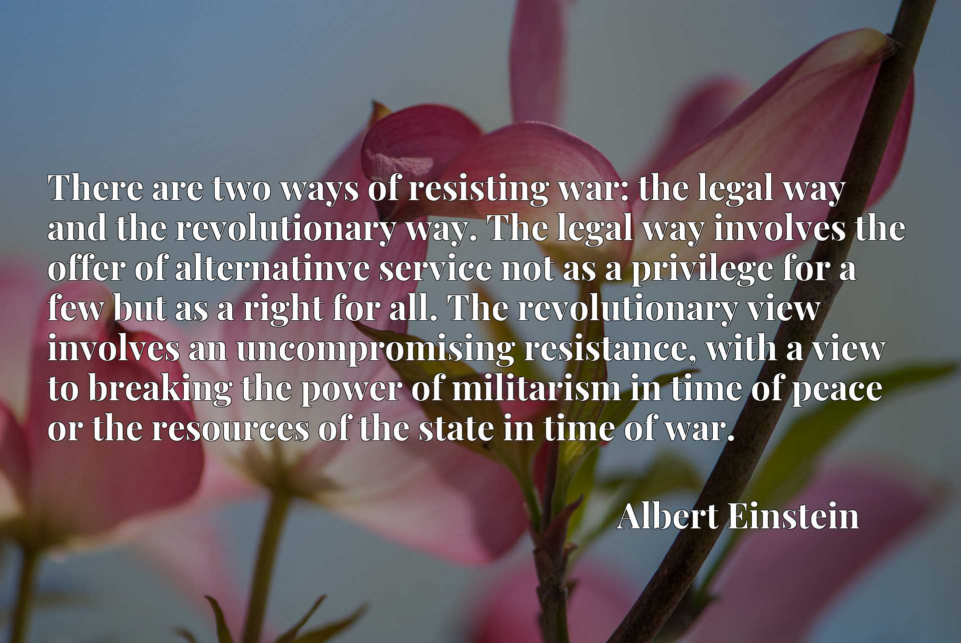 There are two ways of resisting war: the legal way and the revolutionary way. The legal way involves the offer of alternatinve service not as a privilege for a few but as a right for all. The revolutionary view involves an uncompromising resistance, with a view to breaking the power of militarism in time of peace or the resources of the state in time of war.