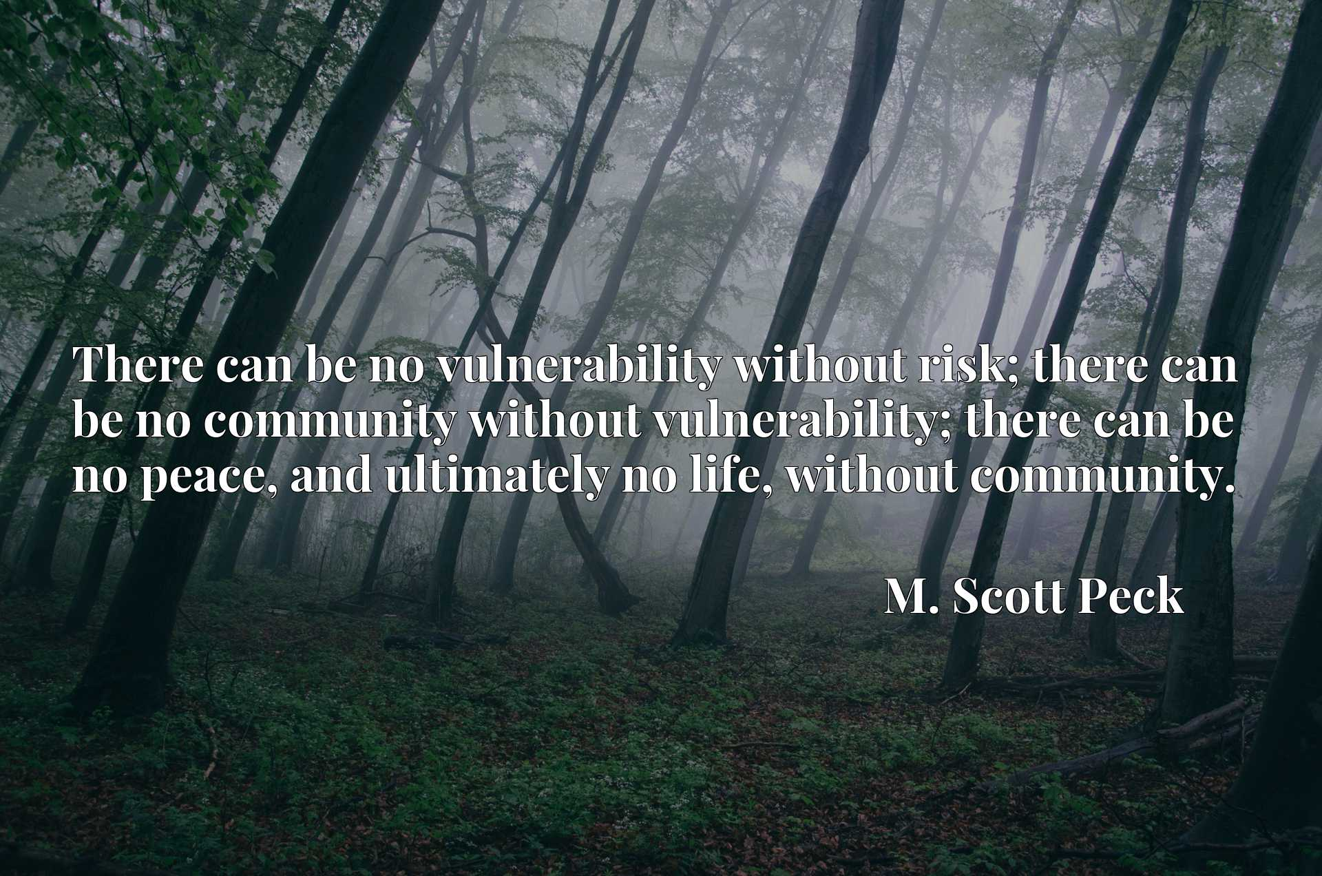 There can be no vulnerability without risk; there can be no community without vulnerability; there can be no peace, and ultimately no life, without community.