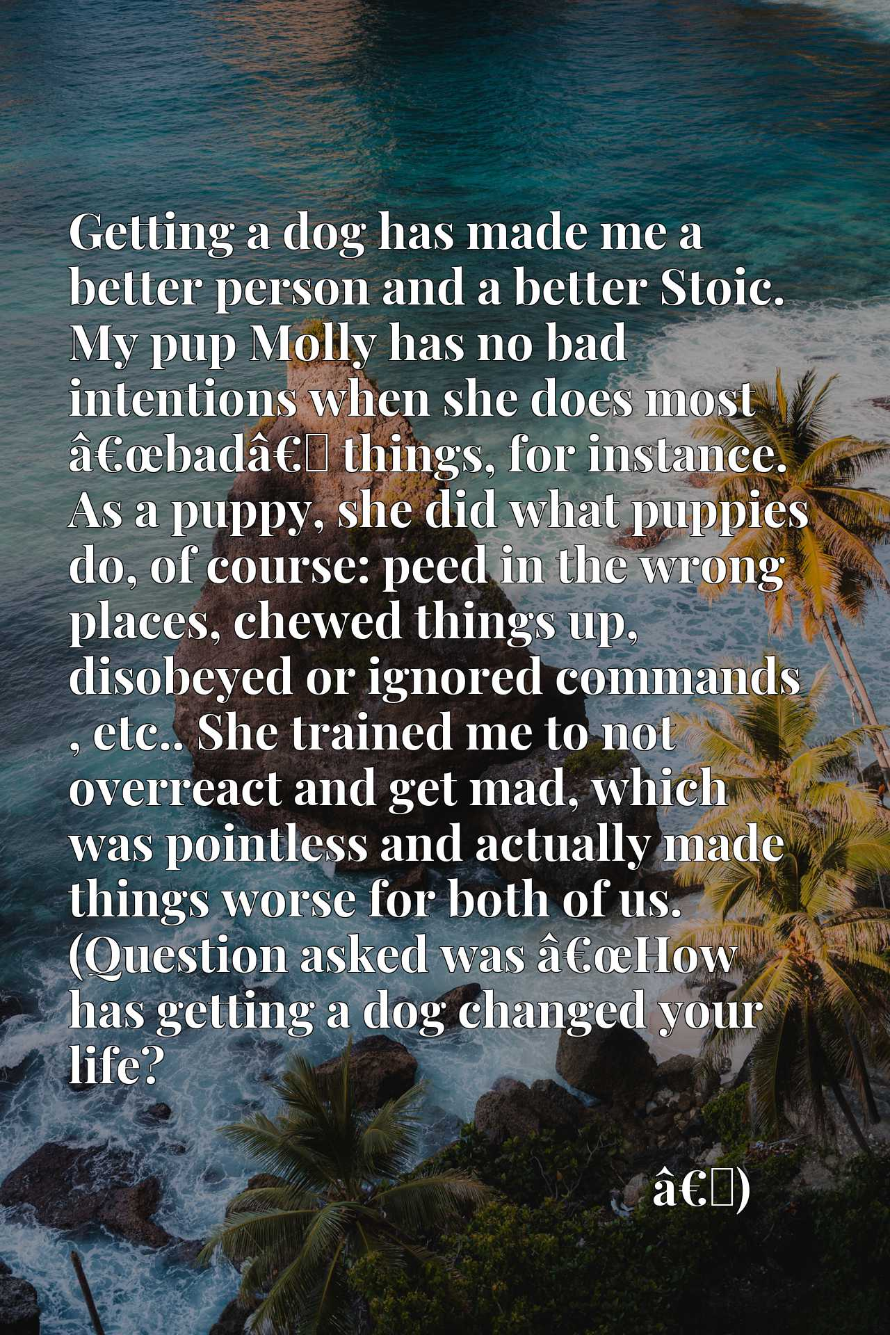 Getting a dog has made me a better person and a better Stoic. My pup Molly has no bad intentions when she does most aEURoebadaEURx9d things, for instance. As a puppy, she did what puppies do, of course: peed in the wrong places, chewed things up, disobeyed or ignored commands , etc.. She trained me to not overreact and get mad, which was pointless and actually made things worse for both of us. (Question asked was aEURoeHow has getting a dog changed your life?
