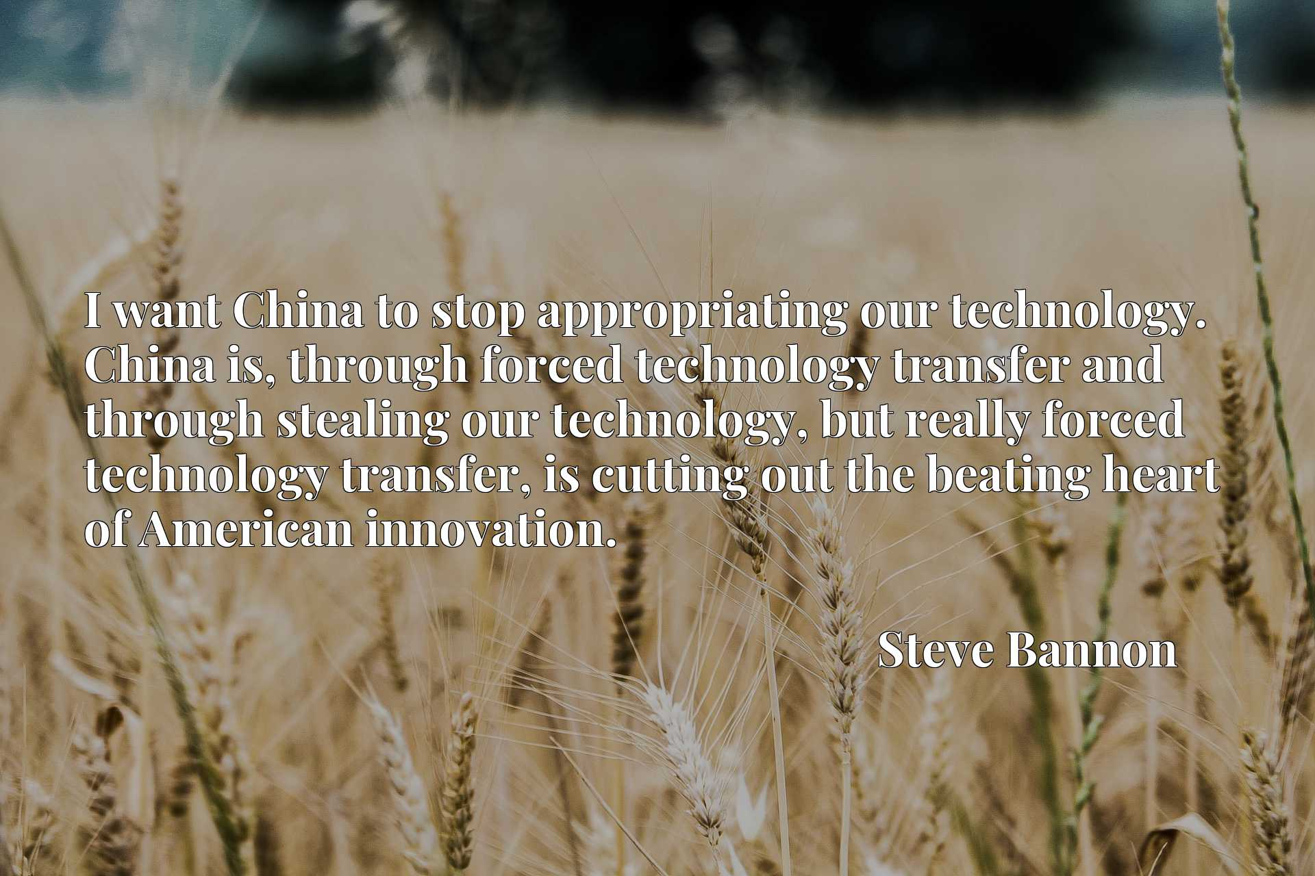 I want China to stop appropriating our technology. China is, through forced technology transfer and through stealing our technology, but really forced technology transfer, is cutting out the beating heart of American innovation.
