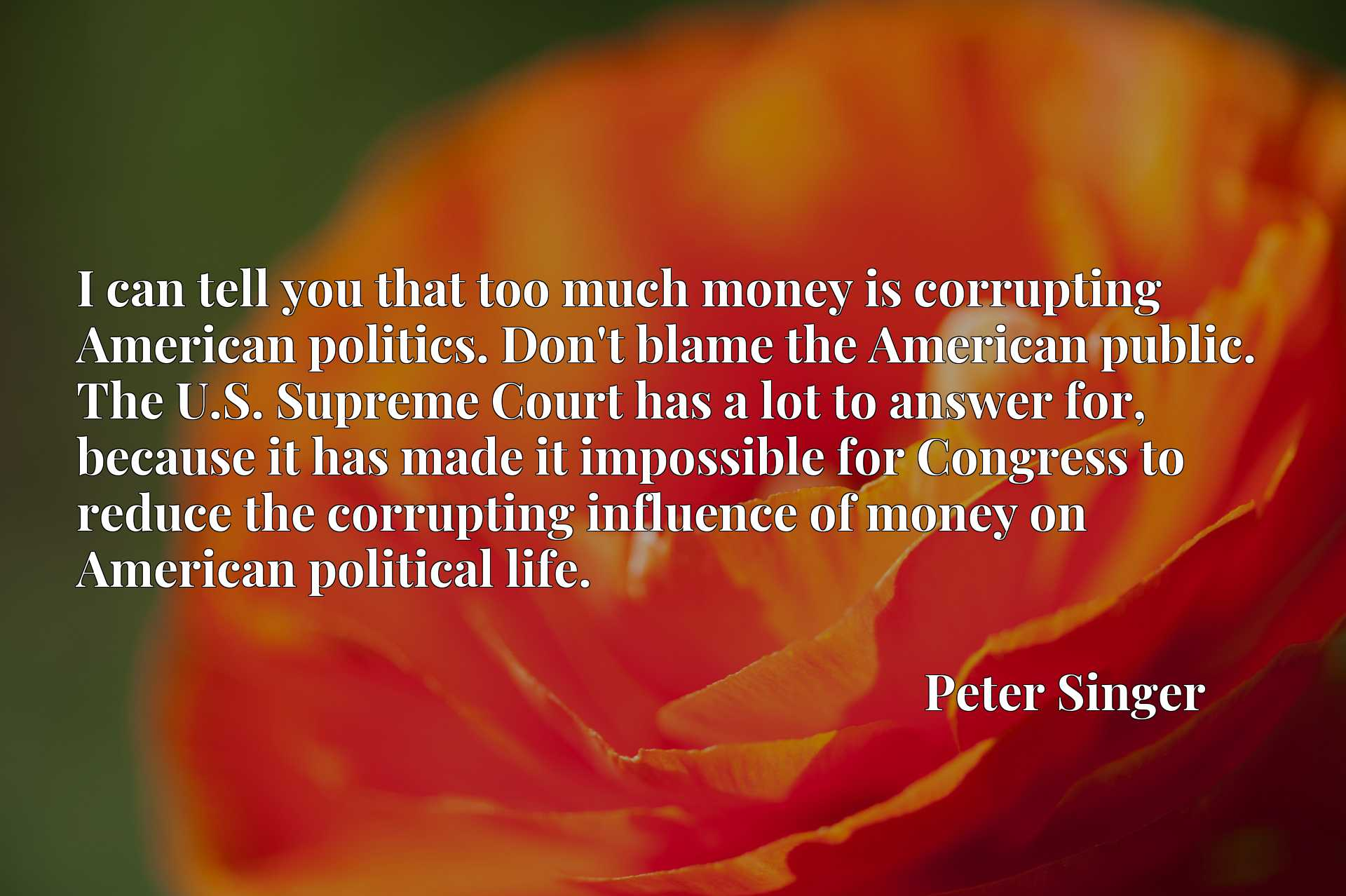 I can tell you that too much money is corrupting American politics. Don't blame the American public. The U.S. Supreme Court has a lot to answer for, because it has made it impossible for Congress to reduce the corrupting influence of money on American political life.