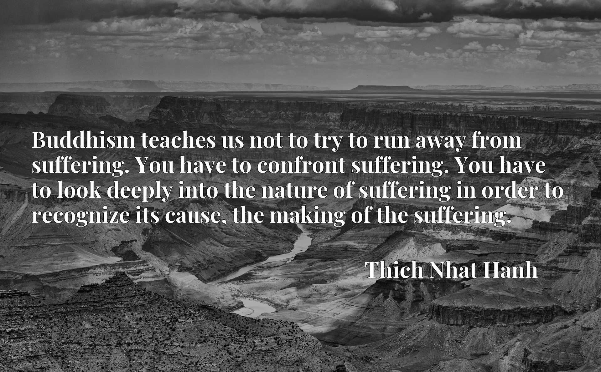 Buddhism teaches us not to try to run away from suffering. You have to confront suffering. You have to look deeply into the nature of suffering in order to recognize its cause, the making of the suffering.
