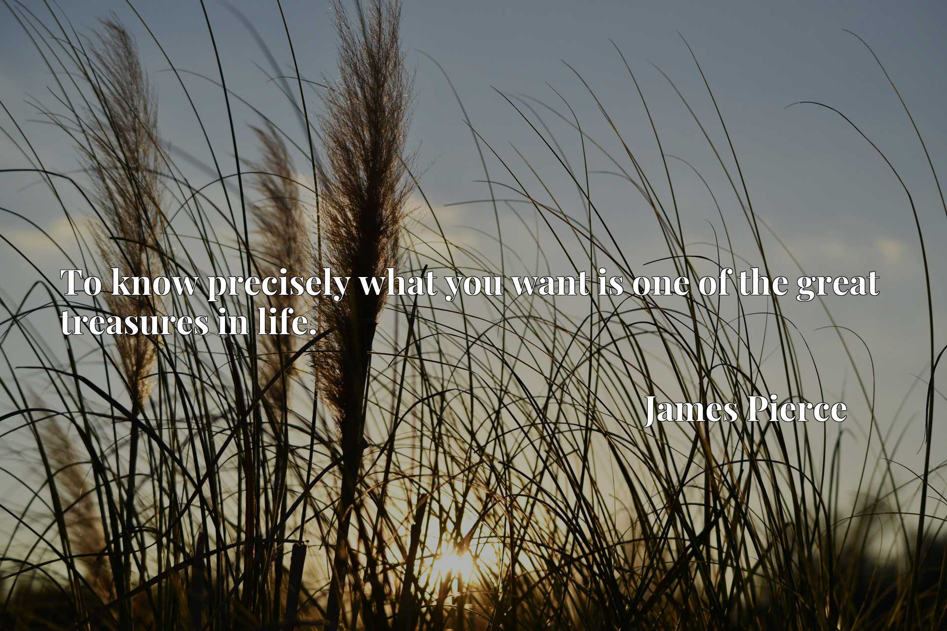 To know precisely what you want is one of the great treasures in life.