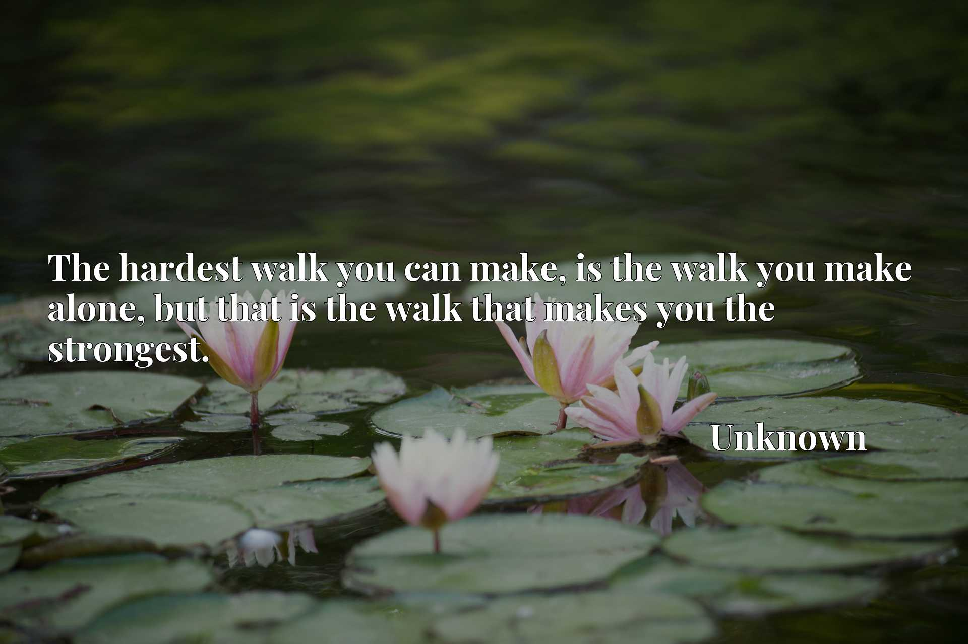 The hardest walk you can make, is the walk you make alone, but that is the walk that makes you the strongest.