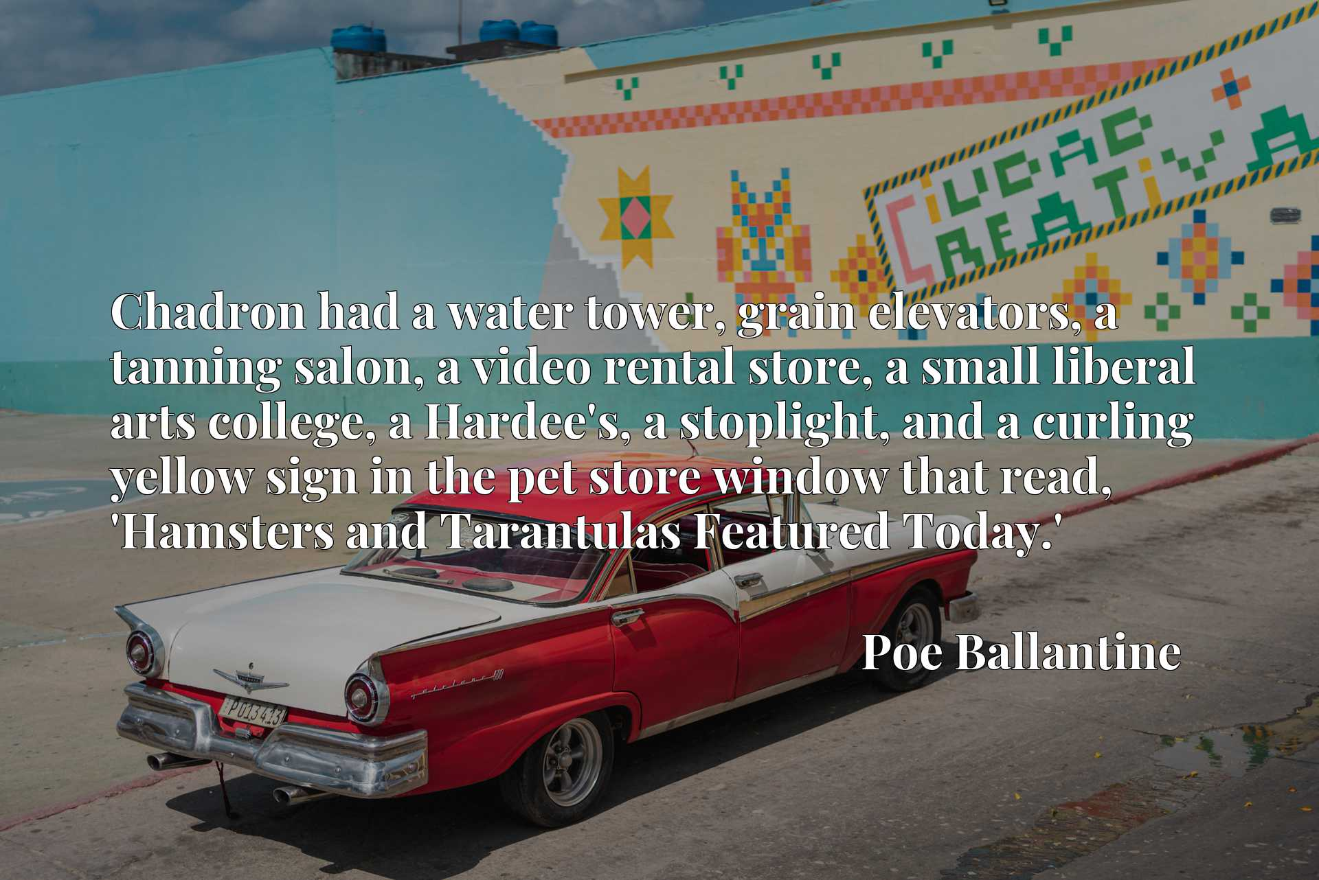 Chadron had a water tower, grain elevators, a tanning salon, a video rental store, a small liberal arts college, a Hardee's, a stoplight, and a curling yellow sign in the pet store window that read, 'Hamsters and Tarantulas Featured Today.'