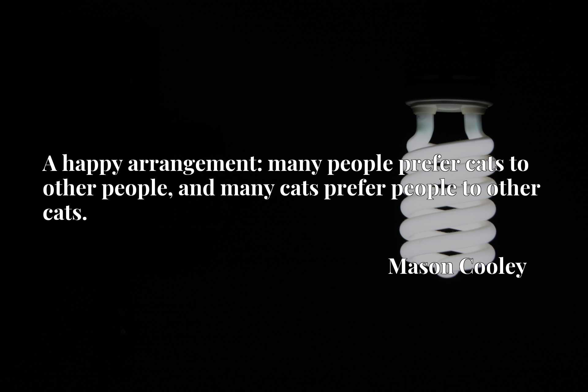 A happy arrangement: many people prefer cats to other people, and many cats prefer people to other cats.
