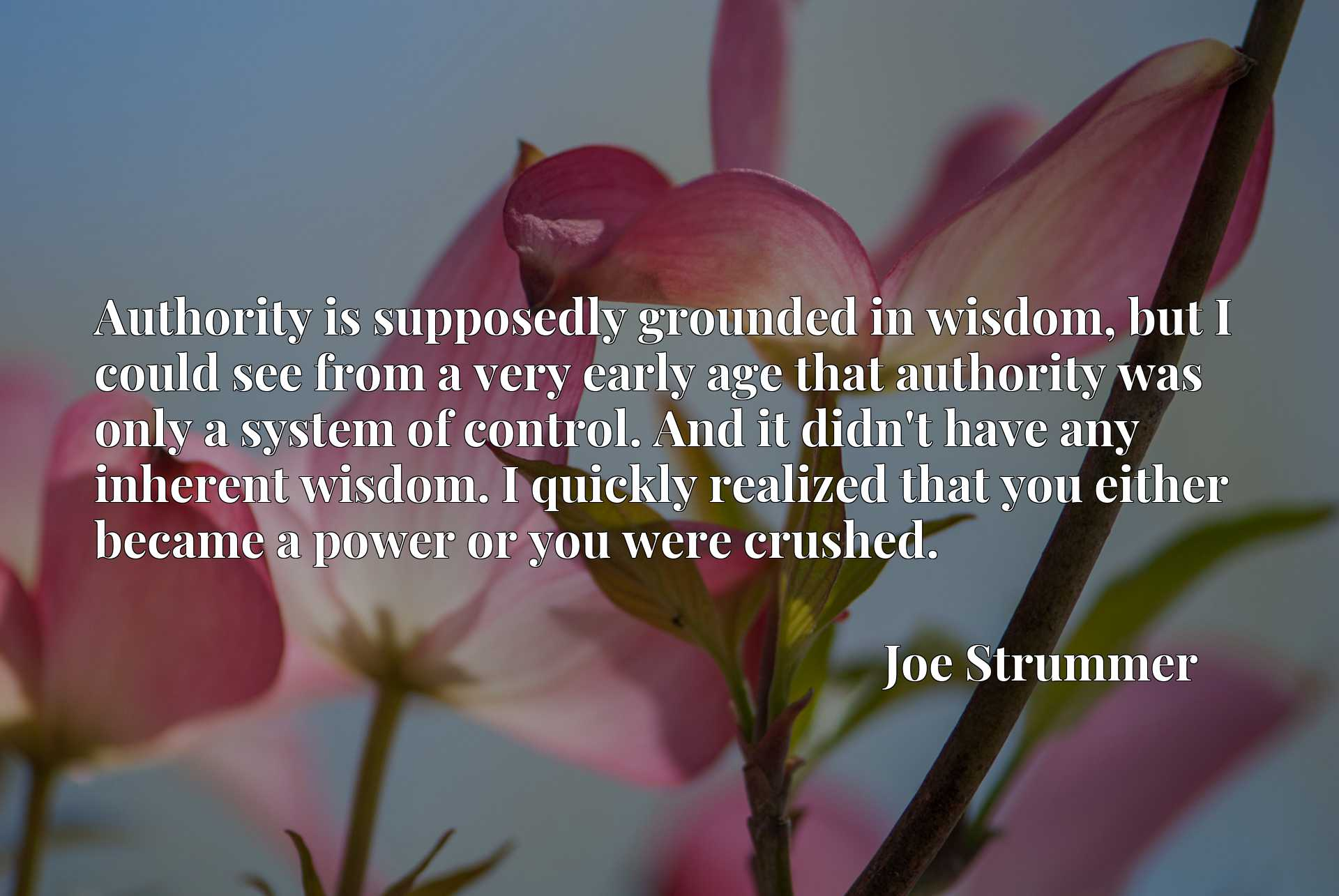 Authority is supposedly grounded in wisdom, but I could see from a very early age that authority was only a system of control. And it didn't have any inherent wisdom. I quickly realized that you either became a power or you were crushed.