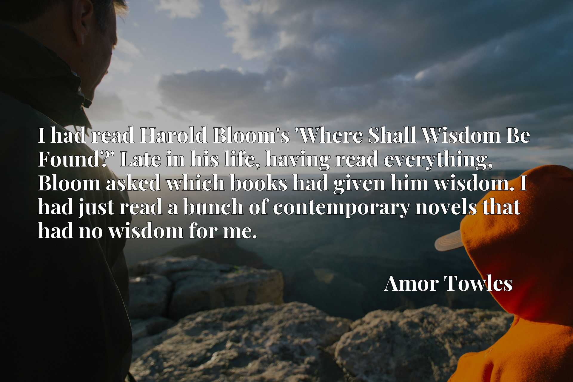 I had read Harold Bloom's 'Where Shall Wisdom Be Found?' Late in his life, having read everything, Bloom asked which books had given him wisdom. I had just read a bunch of contemporary novels that had no wisdom for me.
