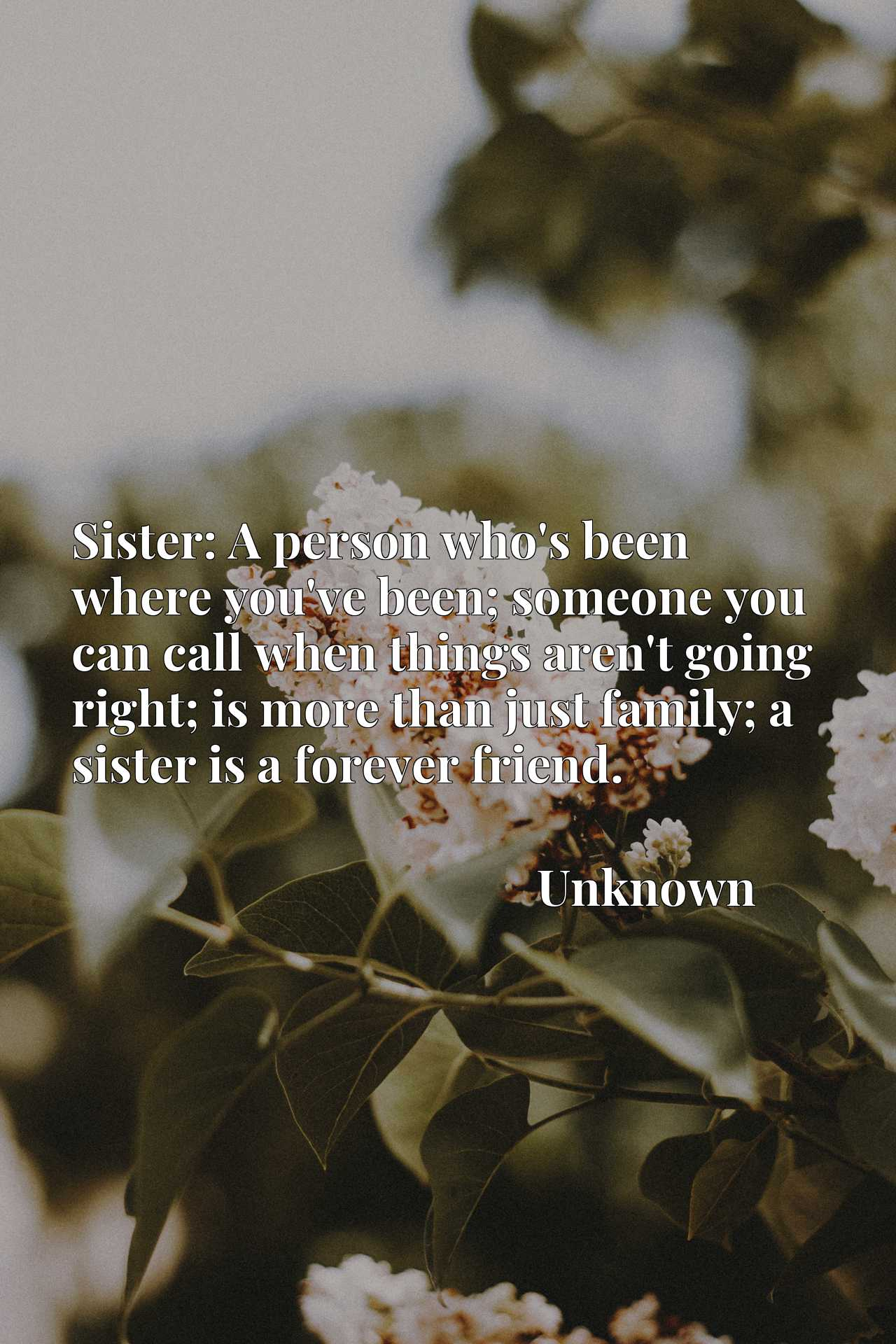 Sister: A person who's been where you've been; someone you can call when things aren't going right; is more than just family; a sister is a forever friend.