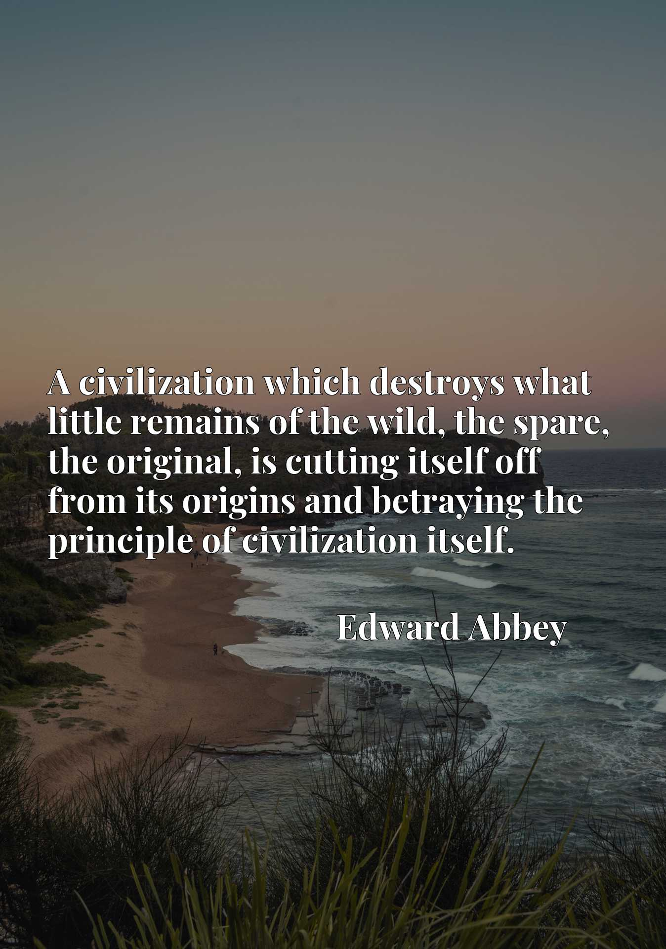 A civilization which destroys what little remains of the wild, the spare, the original, is cutting itself off from its origins and betraying the principle of civilization itself.