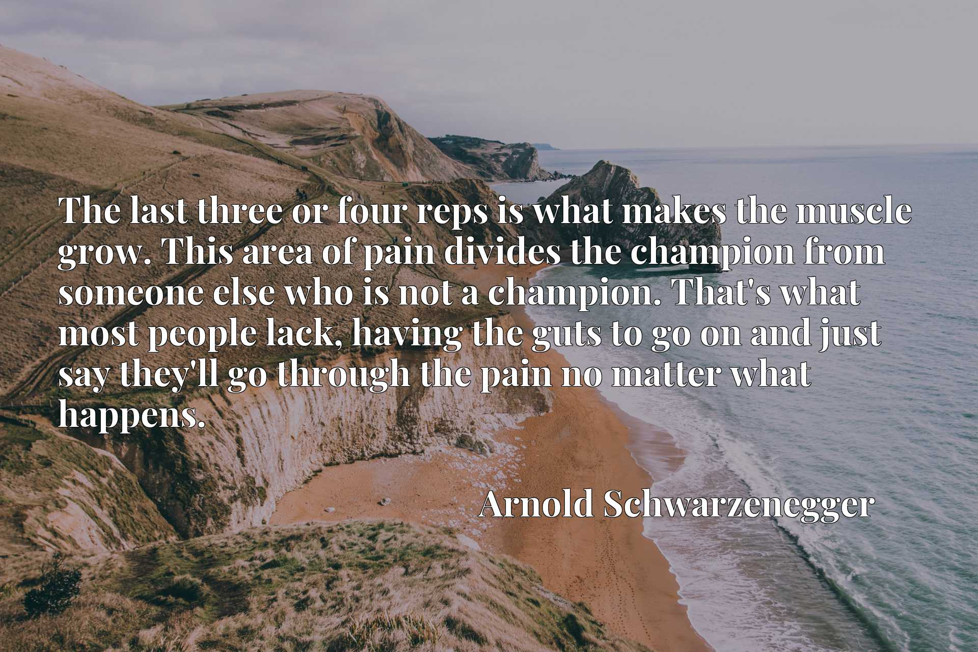 The last three or four reps is what makes the muscle grow. This area of pain divides the champion from someone else who is not a champion. That's what most people lack, having the guts to go on and just say they'll go through the pain no matter what happens.