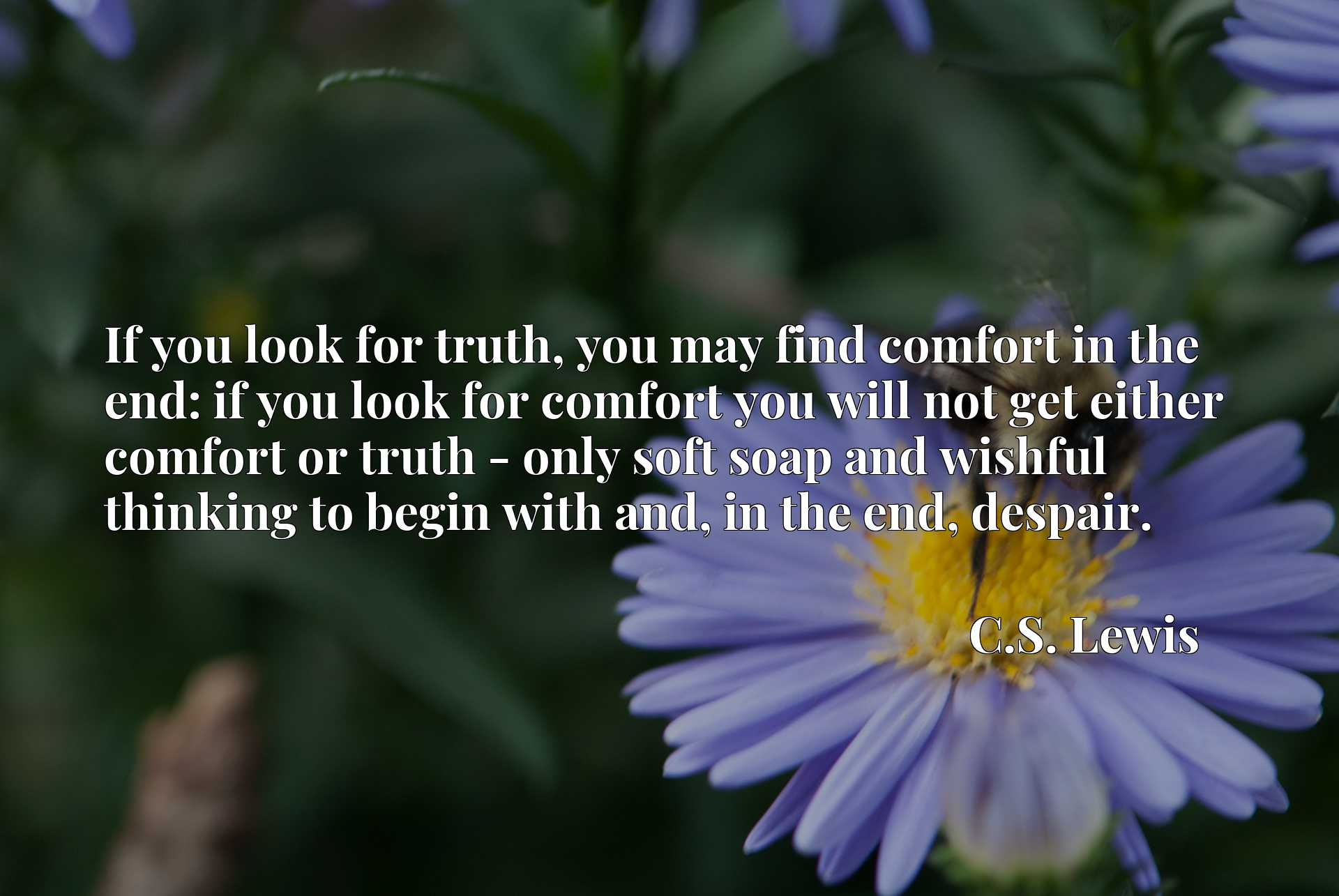 If you look for truth, you may find comfort in the end: if you look for comfort you will not get either comfort or truth - only soft soap and wishful thinking to begin with and, in the end, despair.