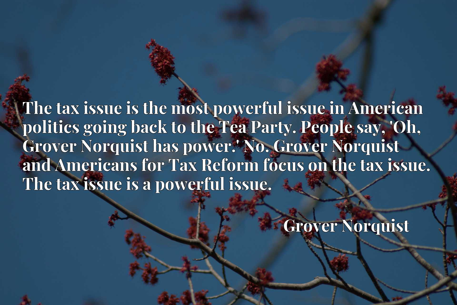 The tax issue is the most powerful issue in American politics going back to the Tea Party. People say, 'Oh, Grover Norquist has power.' No. Grover Norquist and Americans for Tax Reform focus on the tax issue. The tax issue is a powerful issue.