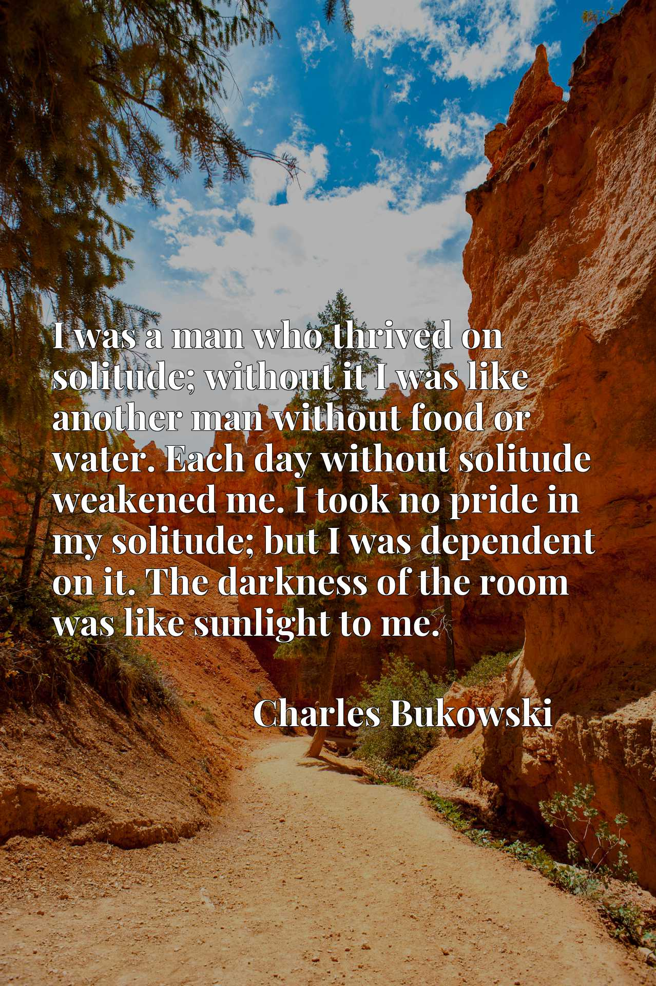 I was a man who thrived on solitude; without it I was like another man without food or water. Each day without solitude weakened me. I took no pride in my solitude; but I was dependent on it. The darkness of the room was like sunlight to me.