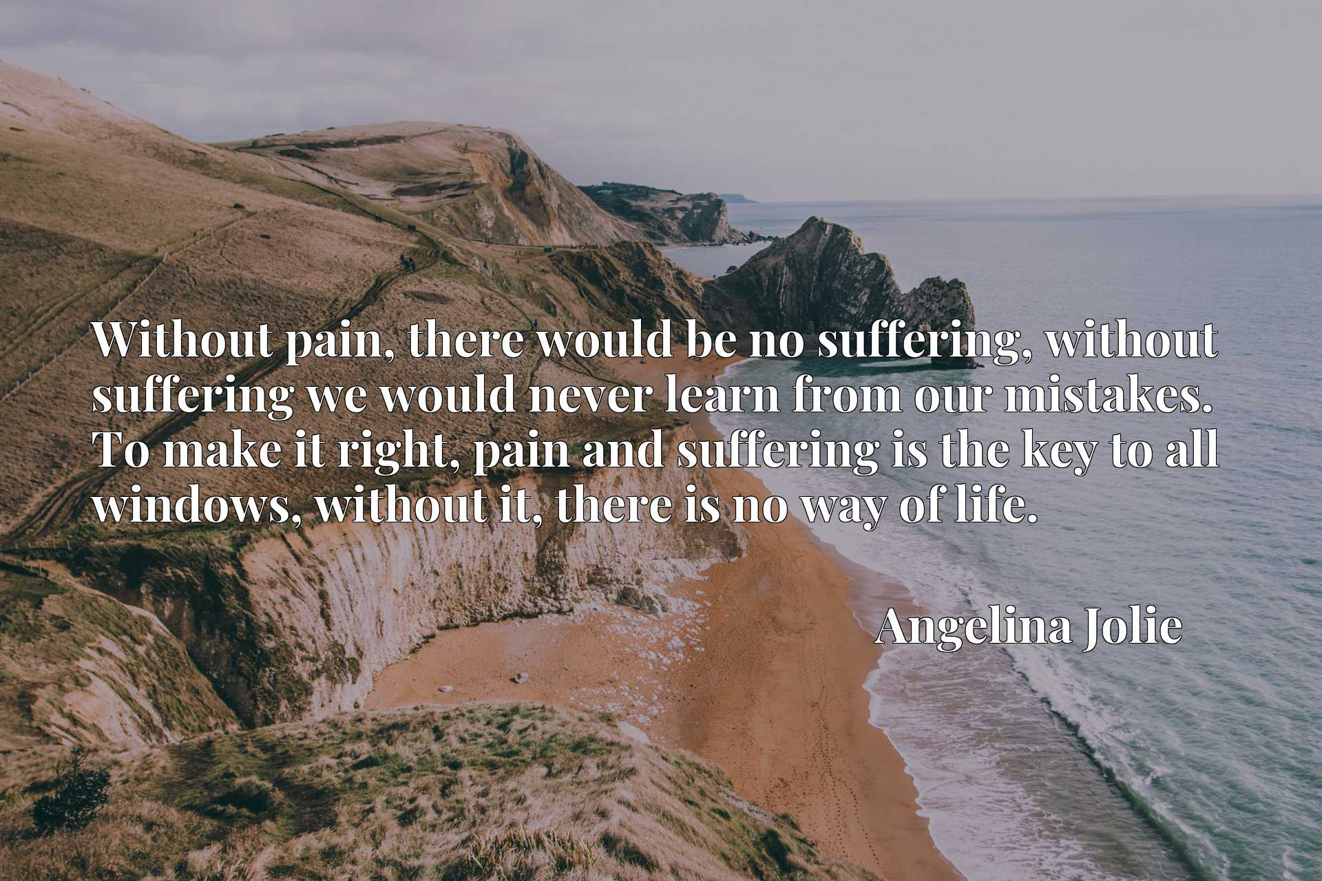 Without pain, there would be no suffering, without suffering we would never learn from our mistakes. To make it right, pain and suffering is the key to all windows, without it, there is no way of life.