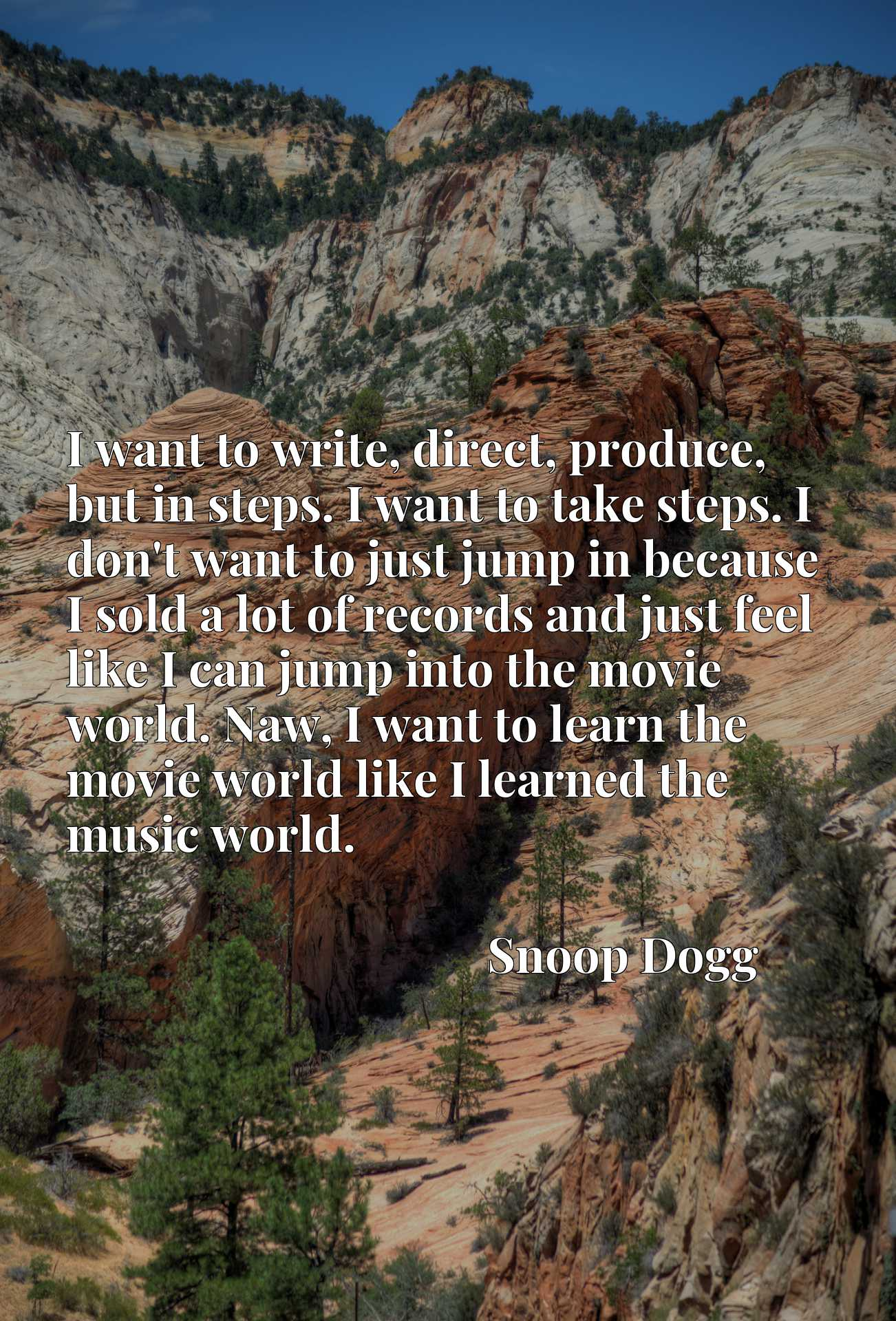 I want to write, direct, produce, but in steps. I want to take steps. I don't want to just jump in because I sold a lot of records and just feel like I can jump into the movie world. Naw, I want to learn the movie world like I learned the music world.