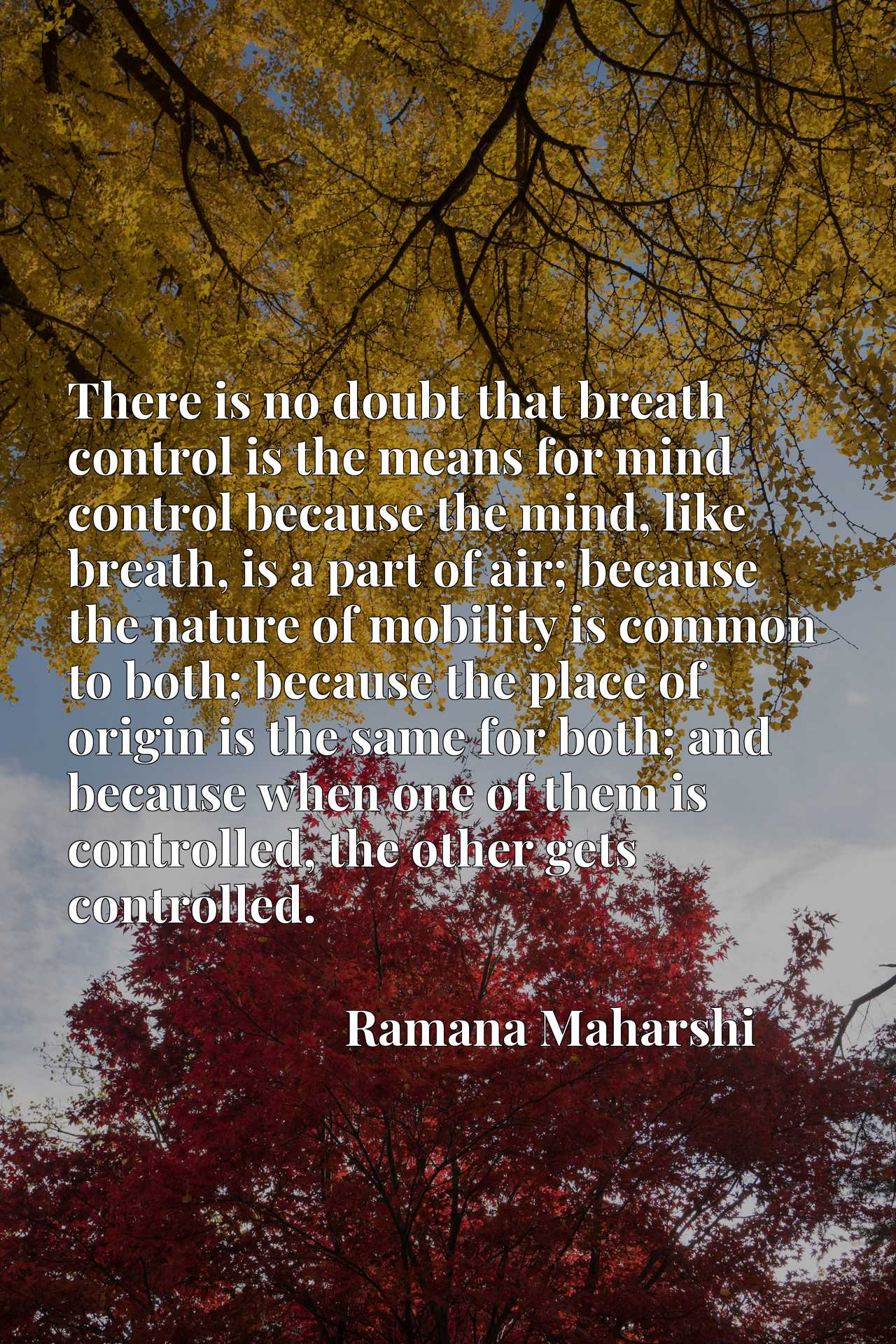 There is no doubt that breath control is the means for mind control because the mind, like breath, is a part of air; because the nature of mobility is common to both; because the place of origin is the same for both; and because when one of them is controlled, the other gets controlled.